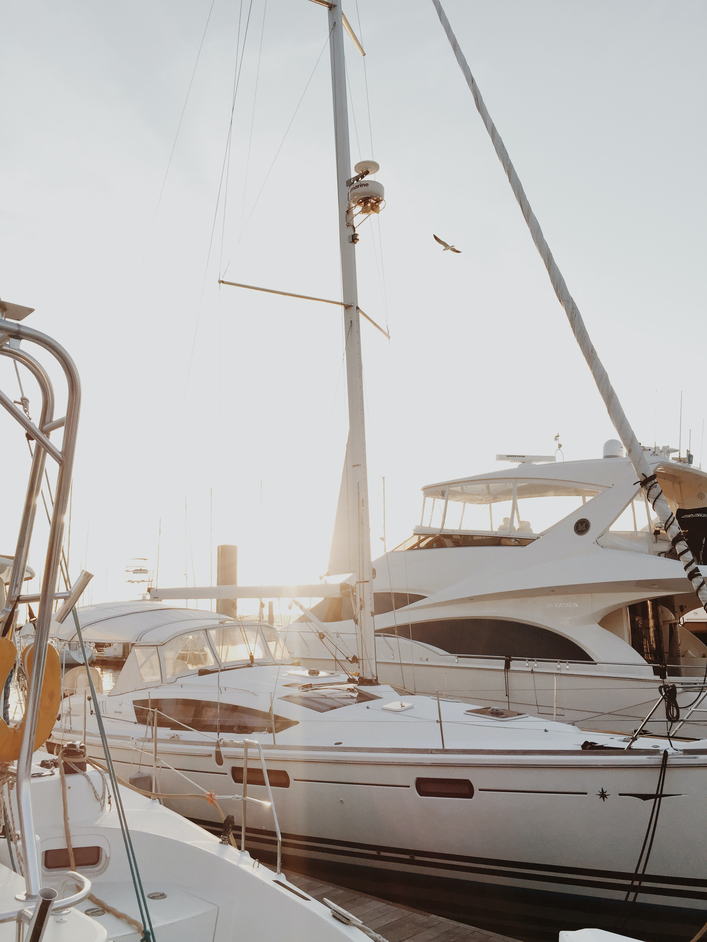 white yacht on dock during daytime