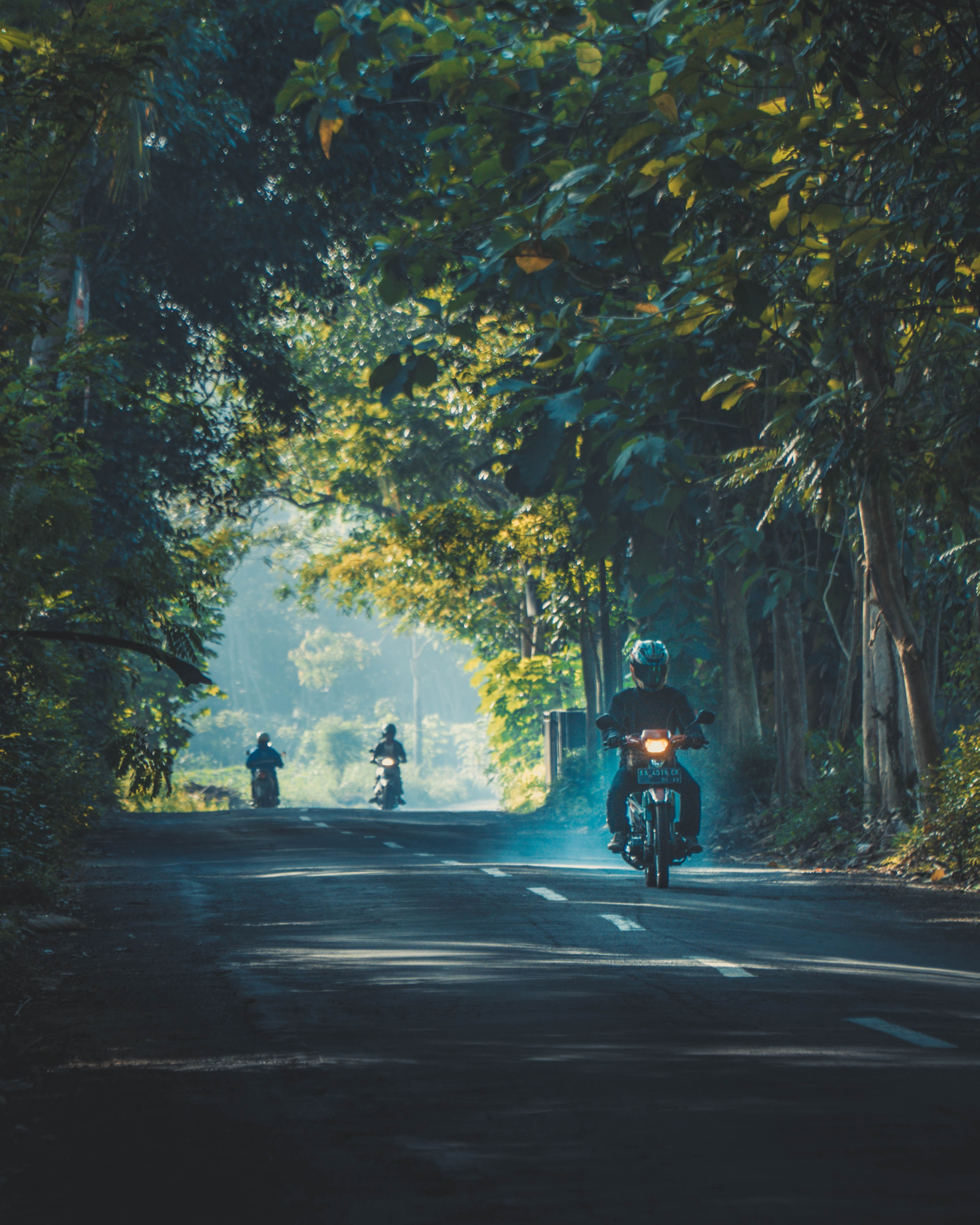 person riding on motorcycle on road between trees