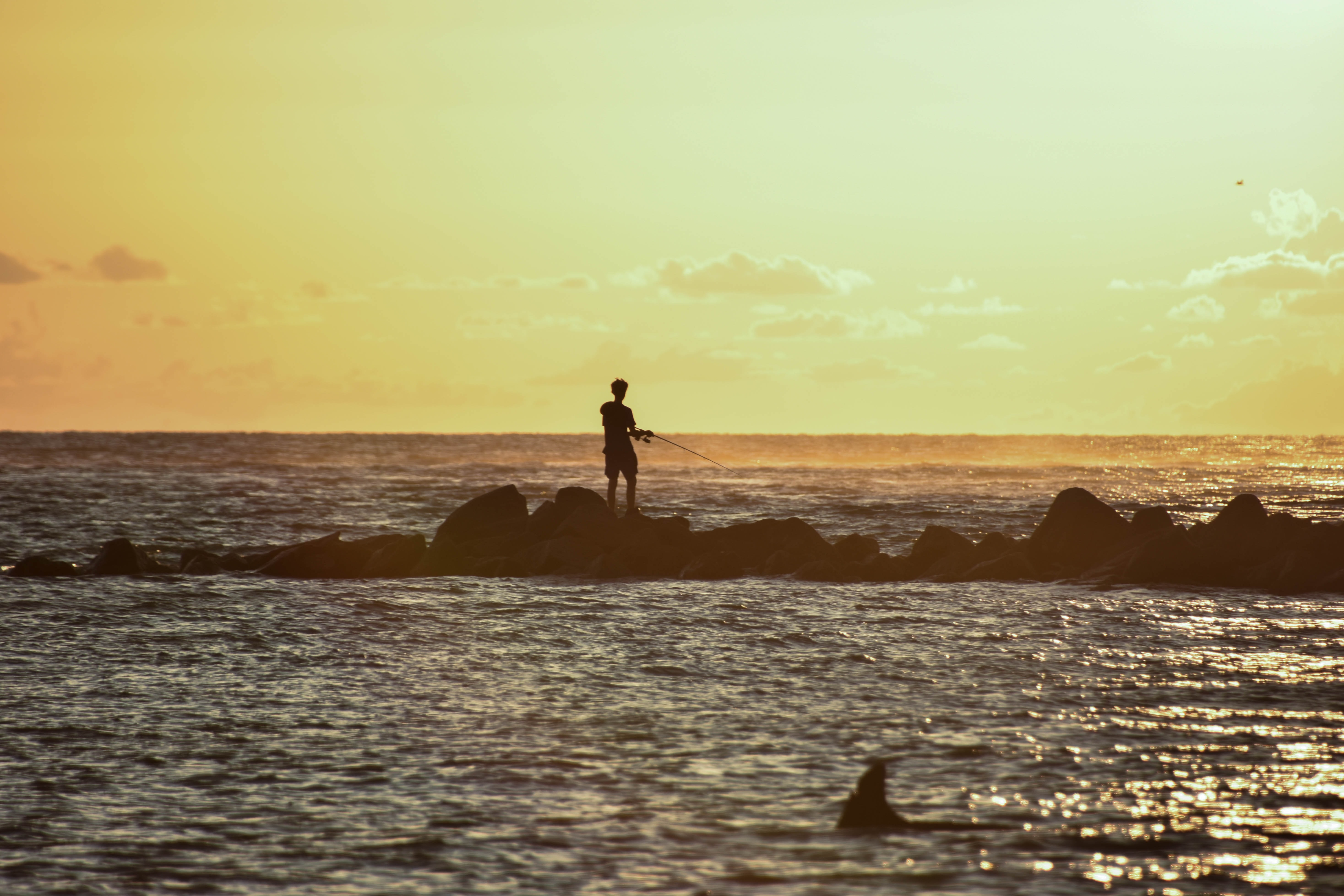 silhouette of person standing on rock formation surrounded by body of water during sunset
