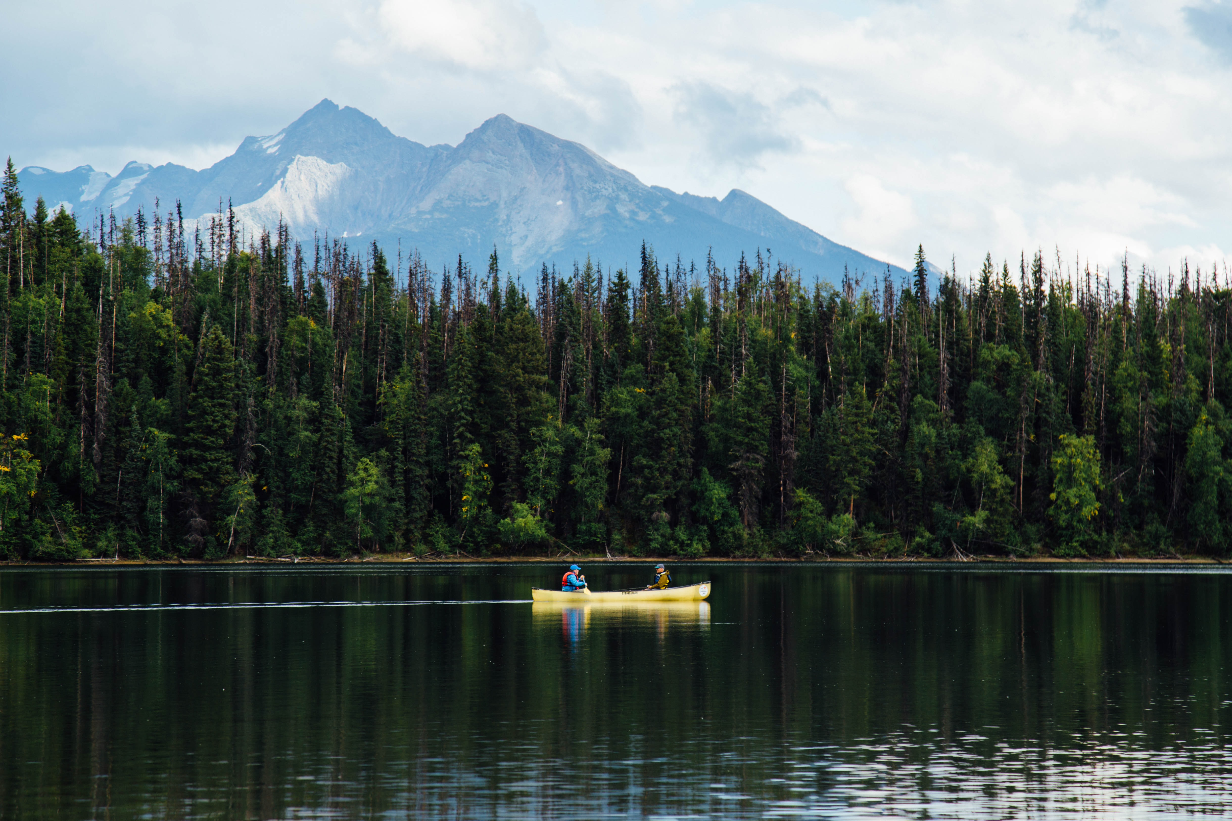 two people in yellow boat sailing near pine trees during daytime