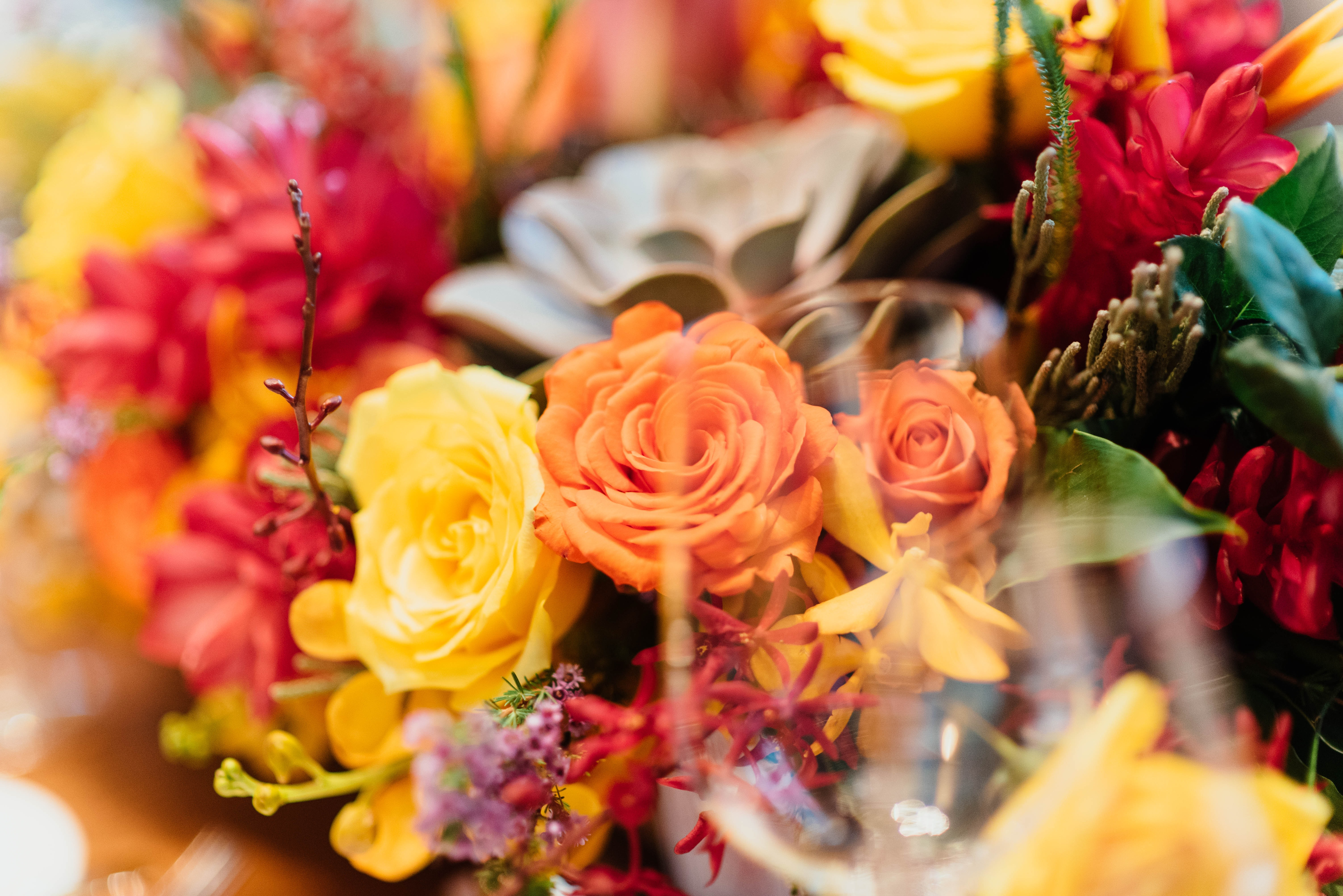 selective focus photography of red, yellow, and orange flower bouquet