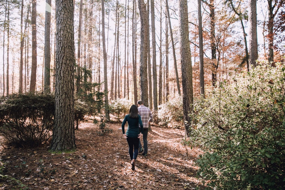 woman and man walking under tall trees