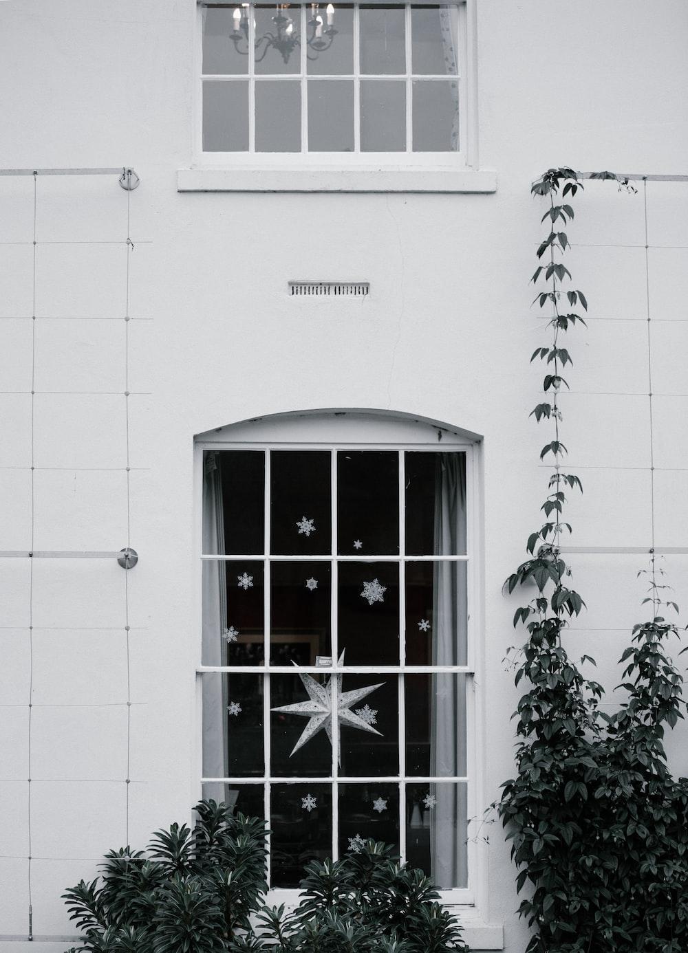 photo of white windowpane beside green leafed trees