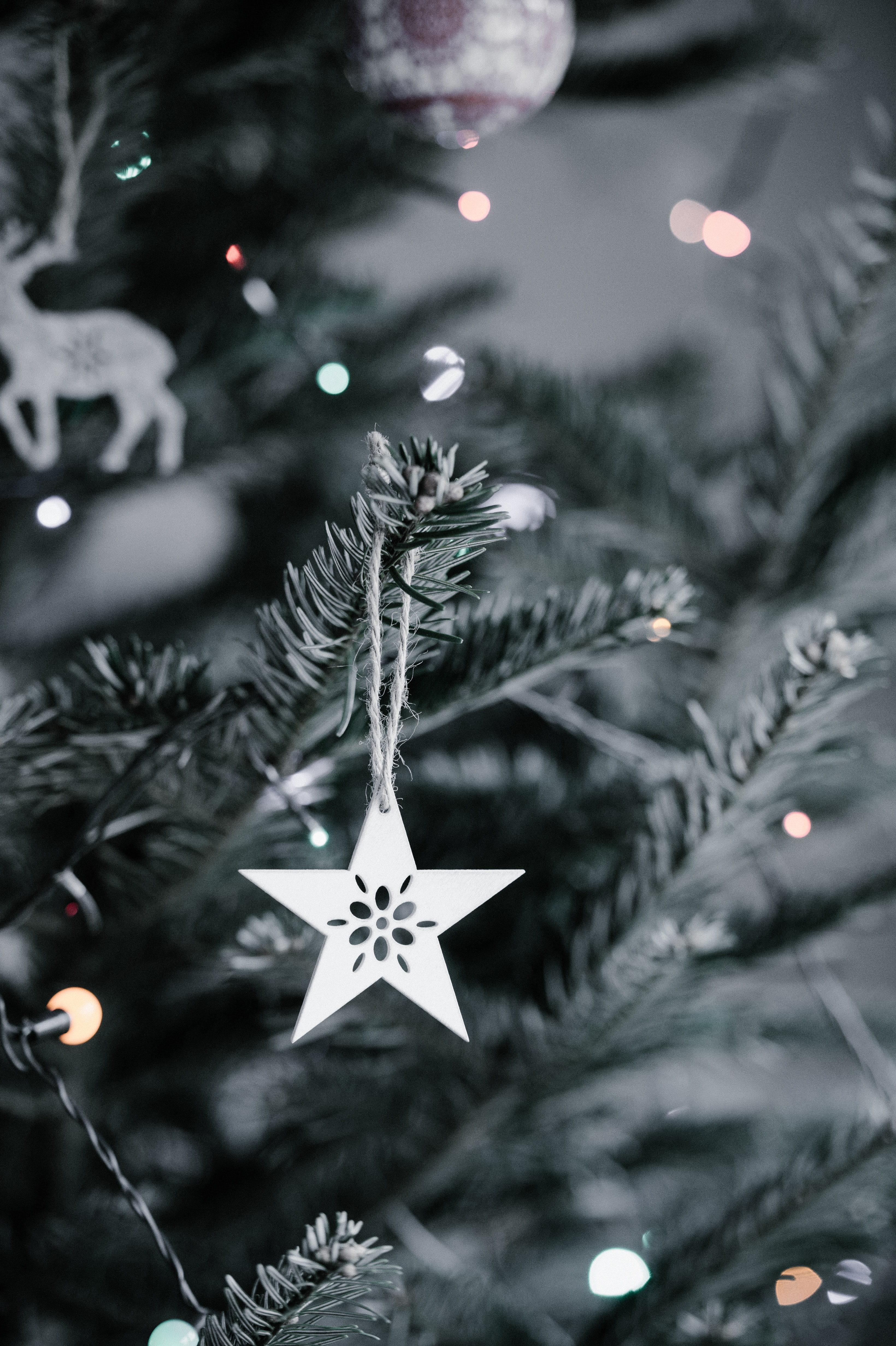 star Christmas ornament hanging in Christmas tree