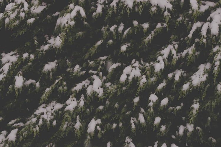Snow-Covered Mountain   HD photo by Sead Dedić (@daesign) on Unsplash