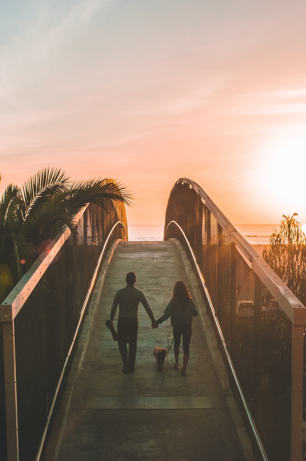 man and woman holding hand while walking on bridge