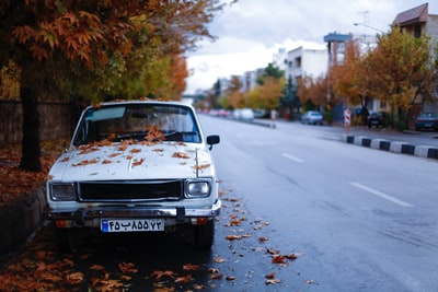 dried leaves on top of white car beside concrete pathway iran teams background