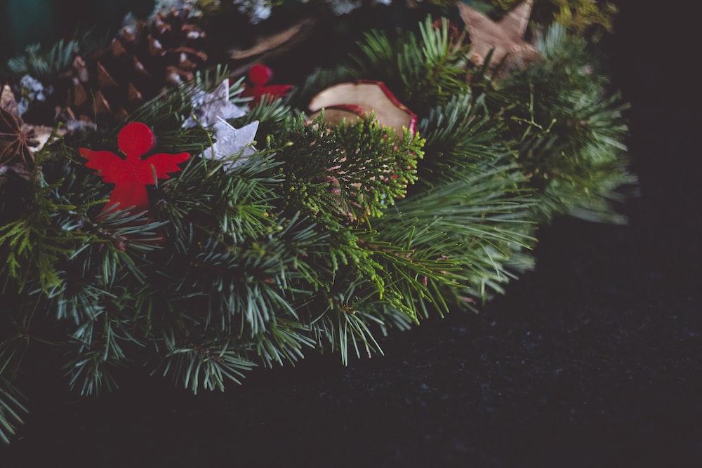 green leaf wreath