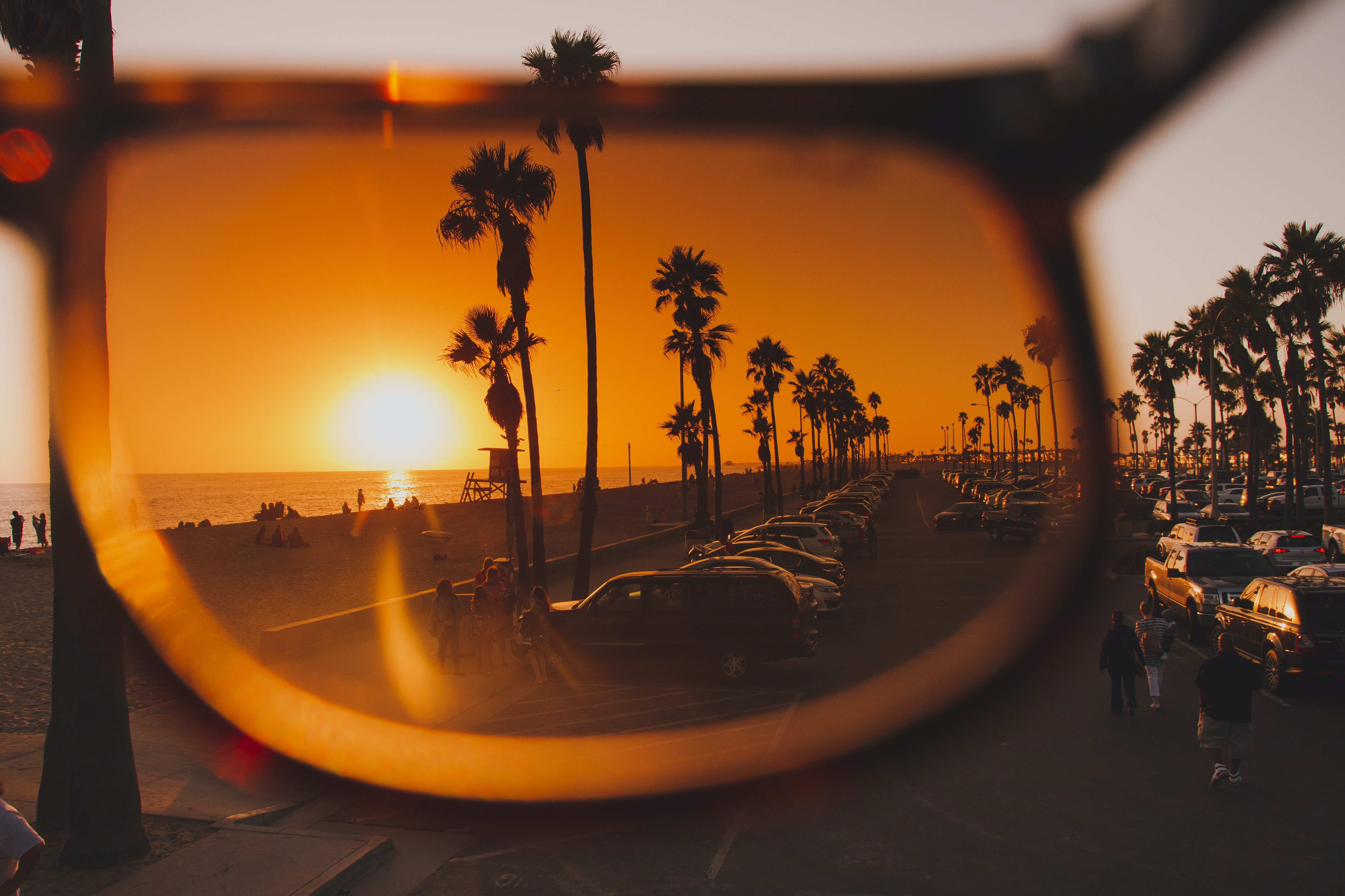 trees and sun photo on brown sunglasses