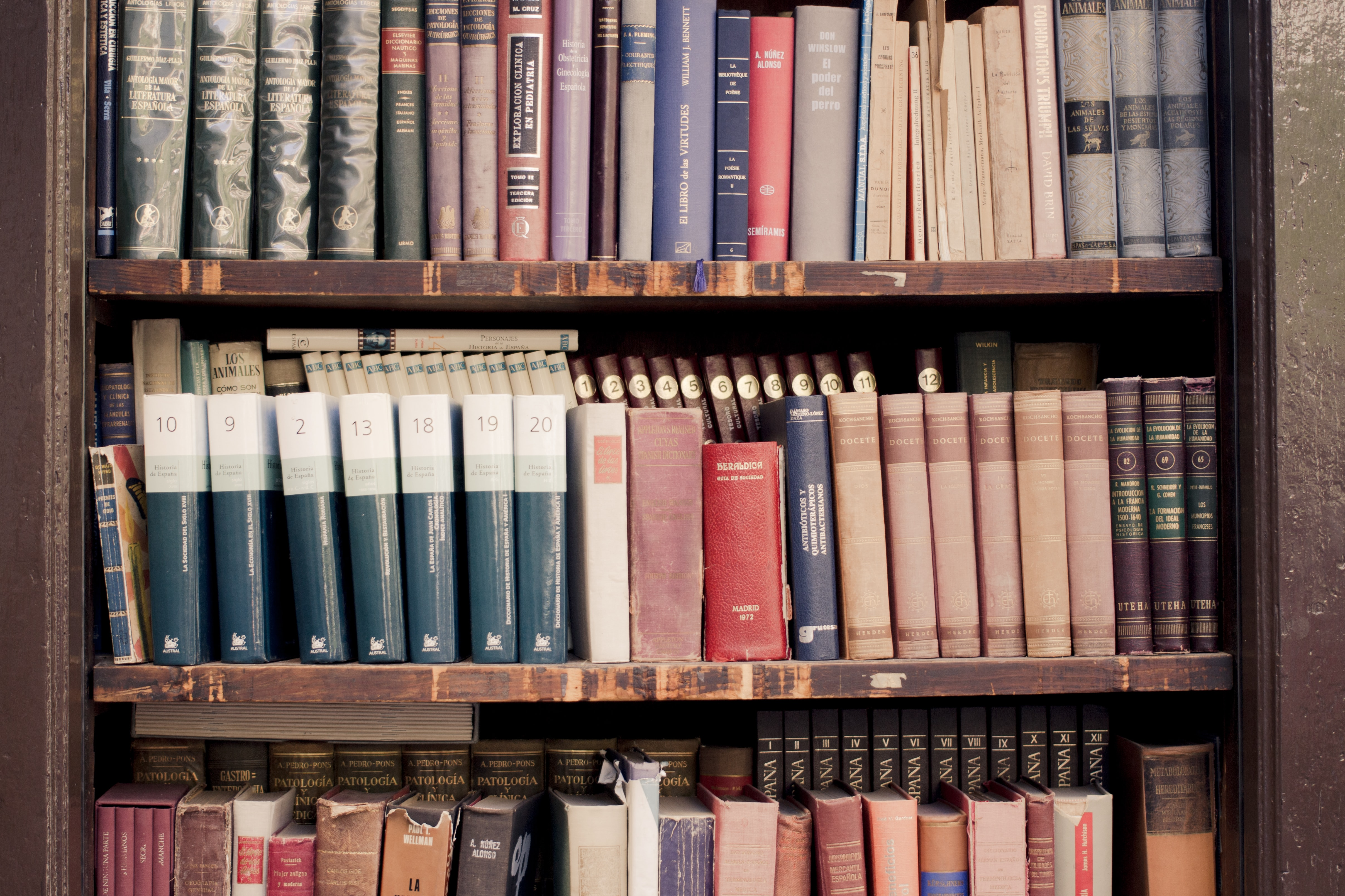 brown wooden shelf filled with books