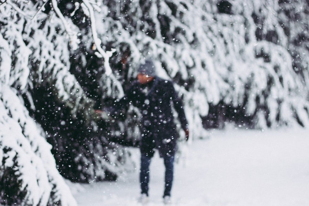 person wearing black jacket standing beside trees covered by snow