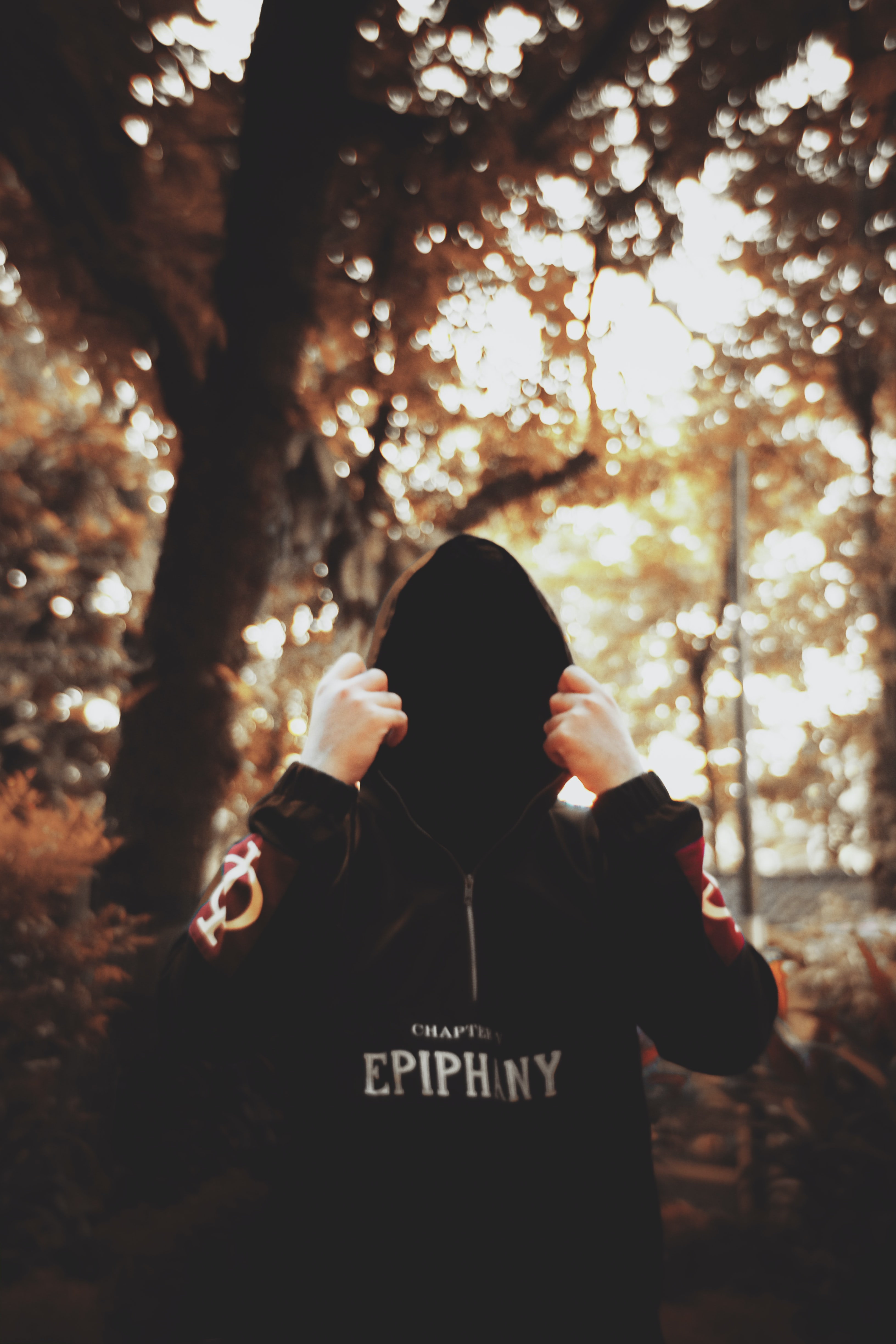 person wearing black hooded jacket while standing under the tree