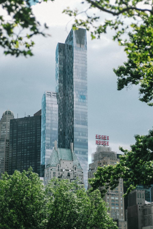 city building near trees