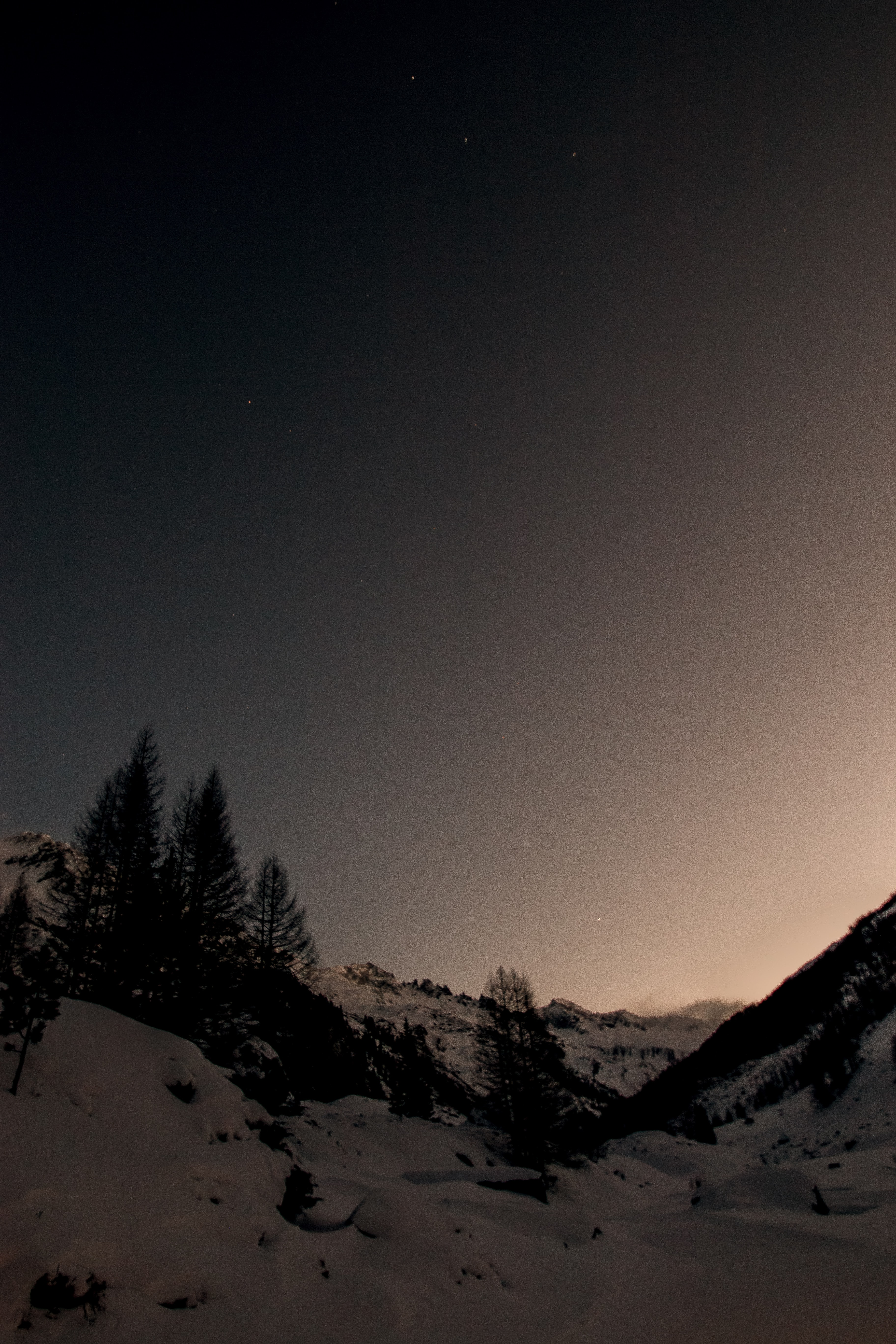 silhouette photography of pine trees at the mountains covered in snow