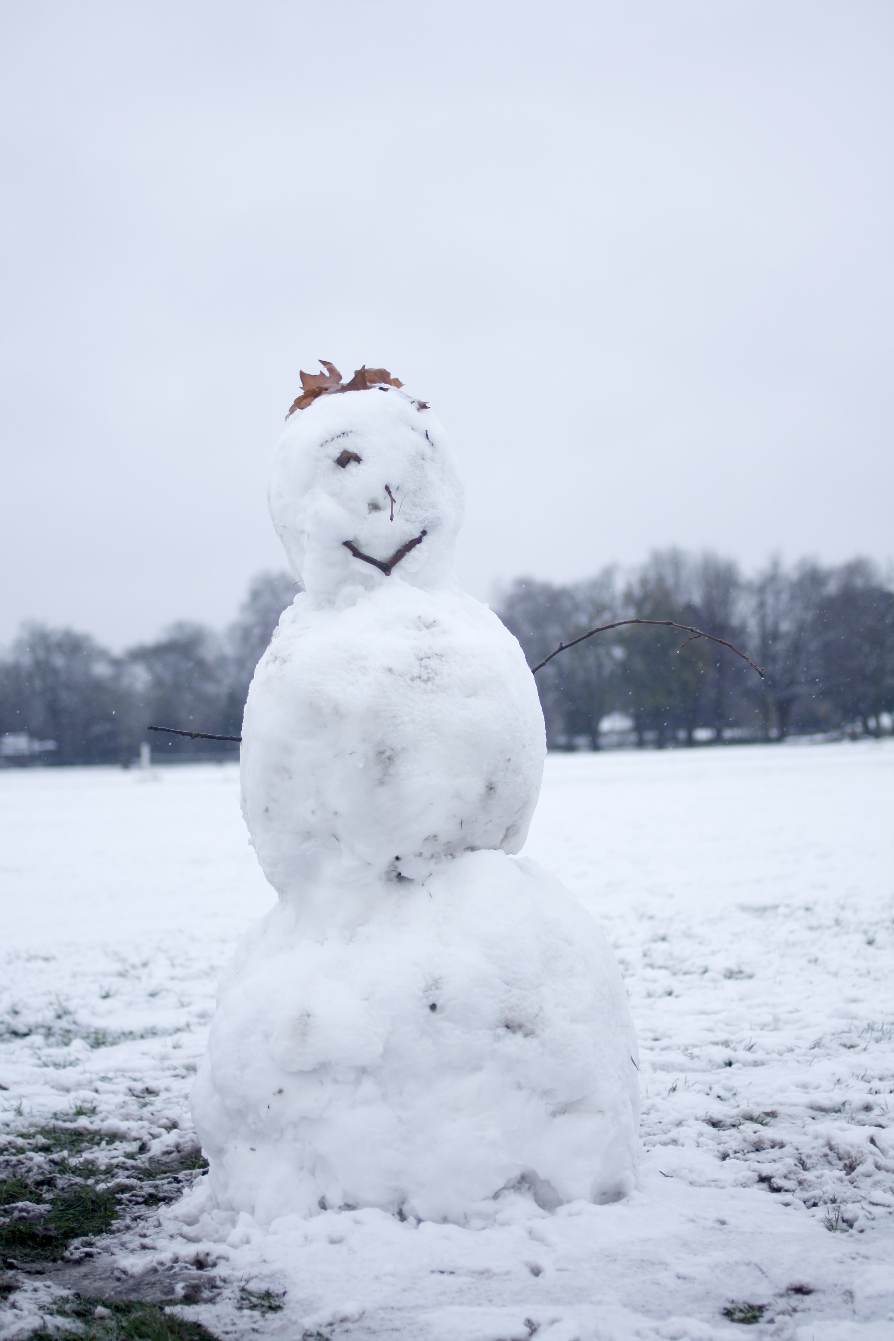selective focus photography of snowman