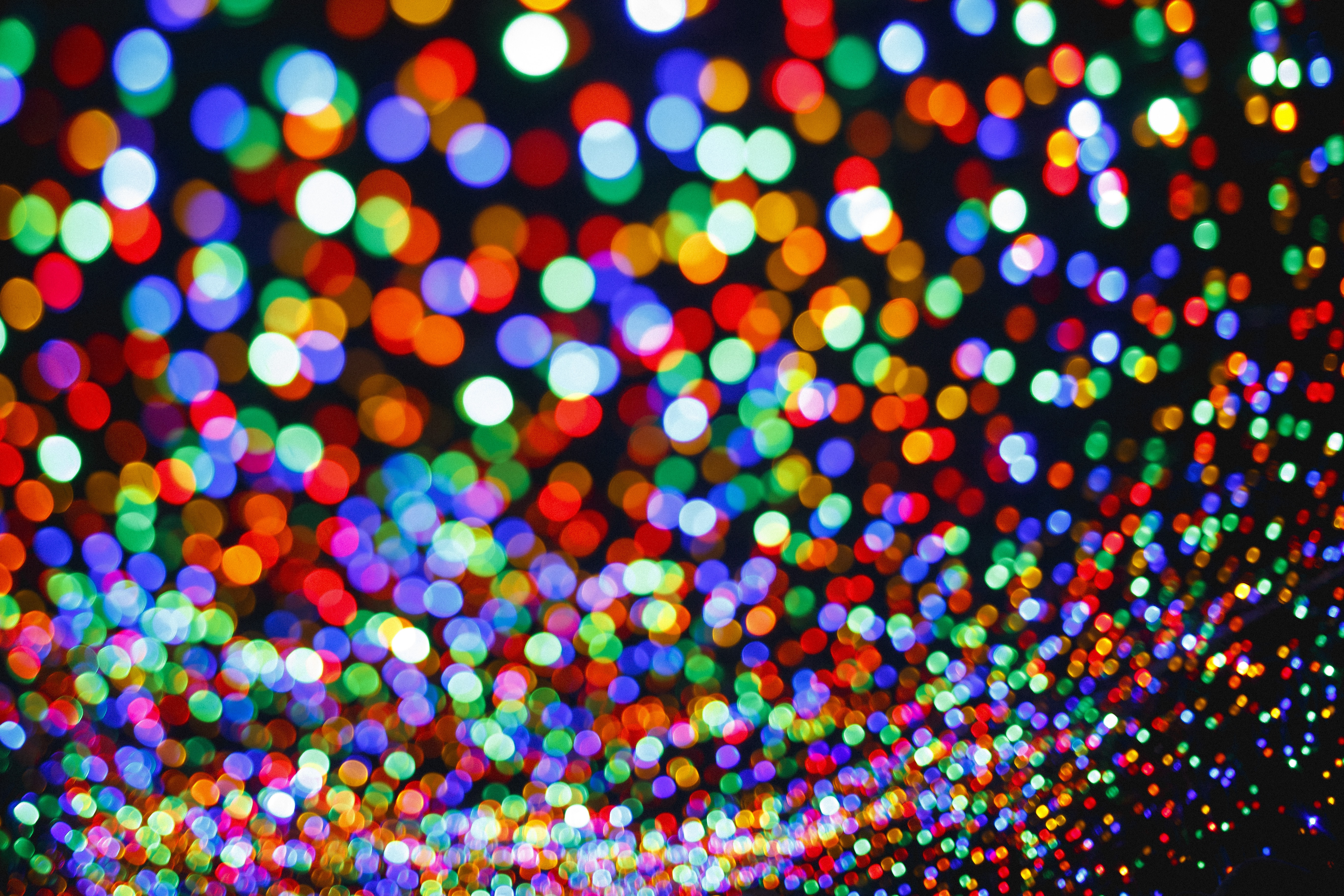 multicolored bokeh photo