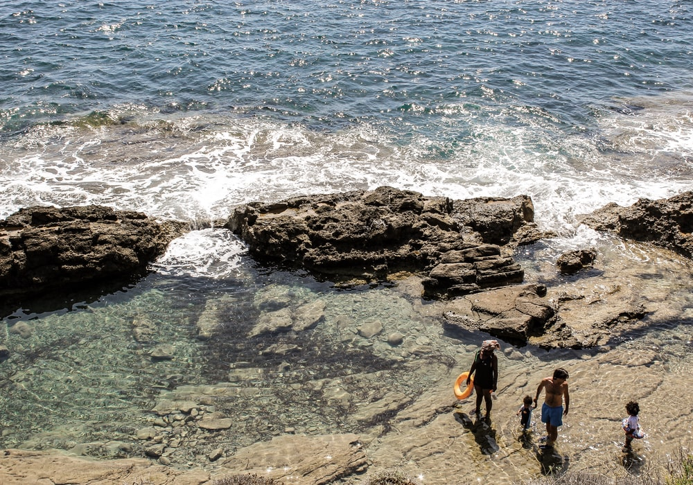 aerial photography of couple with two children walking on shore during daytime