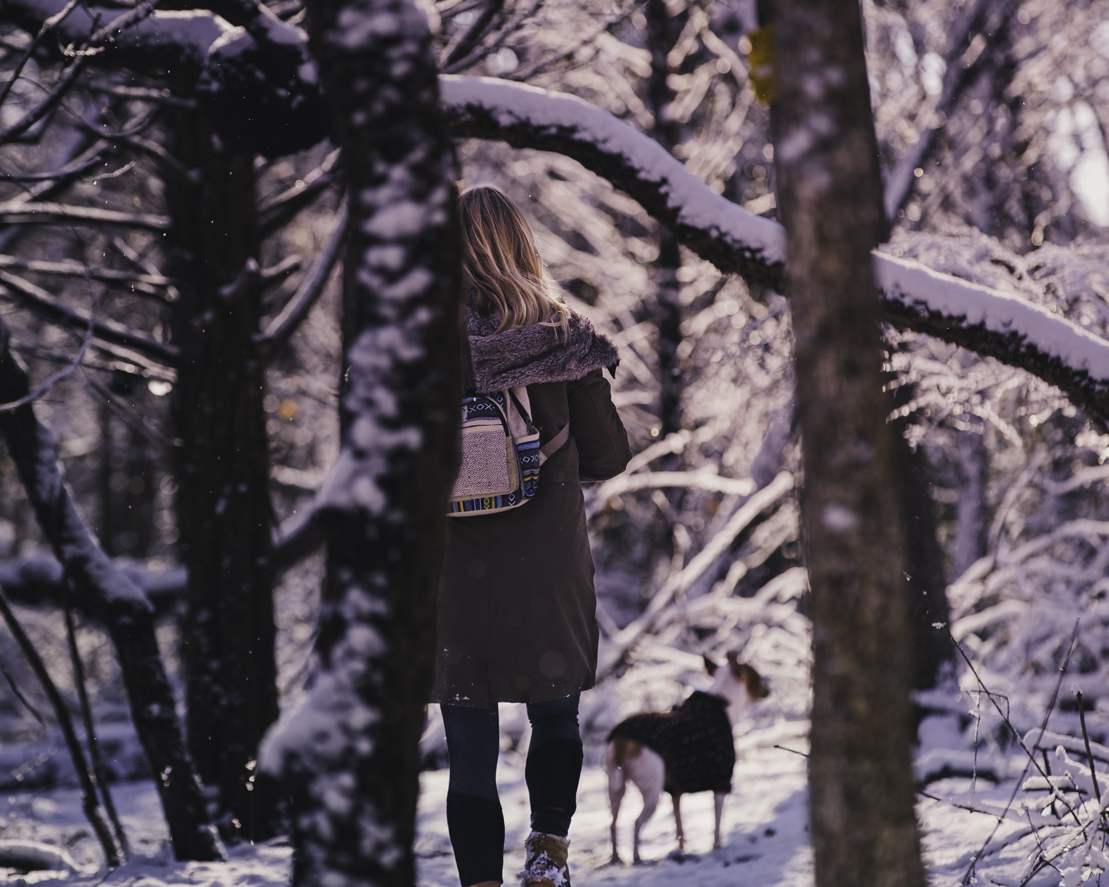 woman and dog standing on snow field near trees