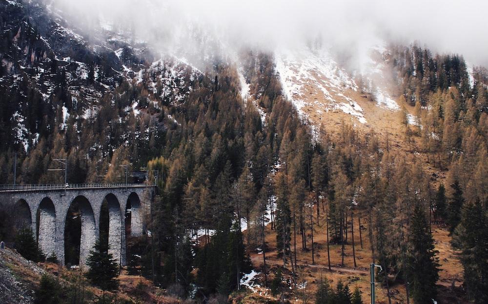 gray concrete bridge leading to tunnel under mountain