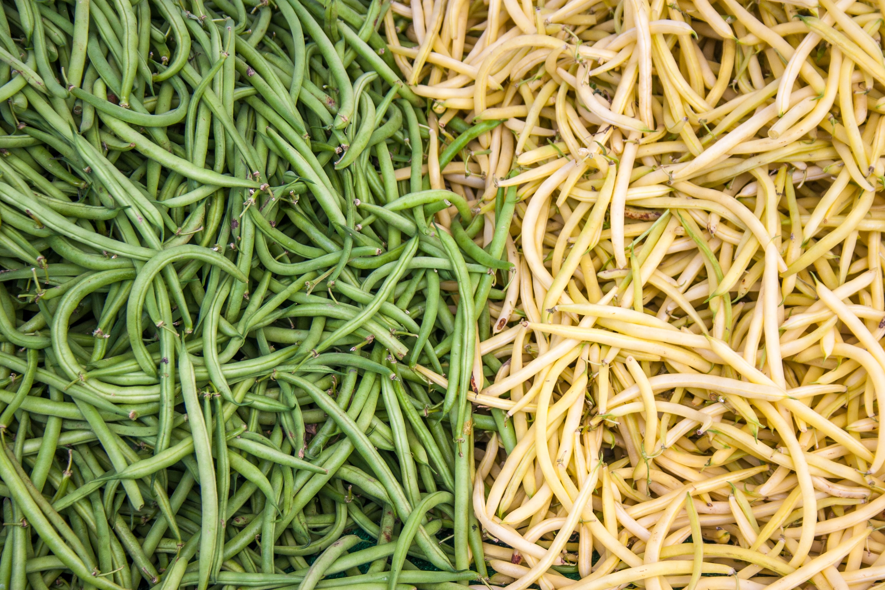 green and yellow vegetables