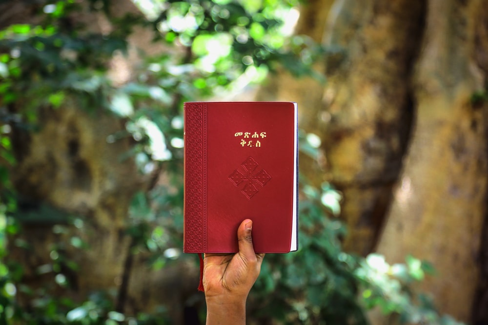 person holding up high red label book