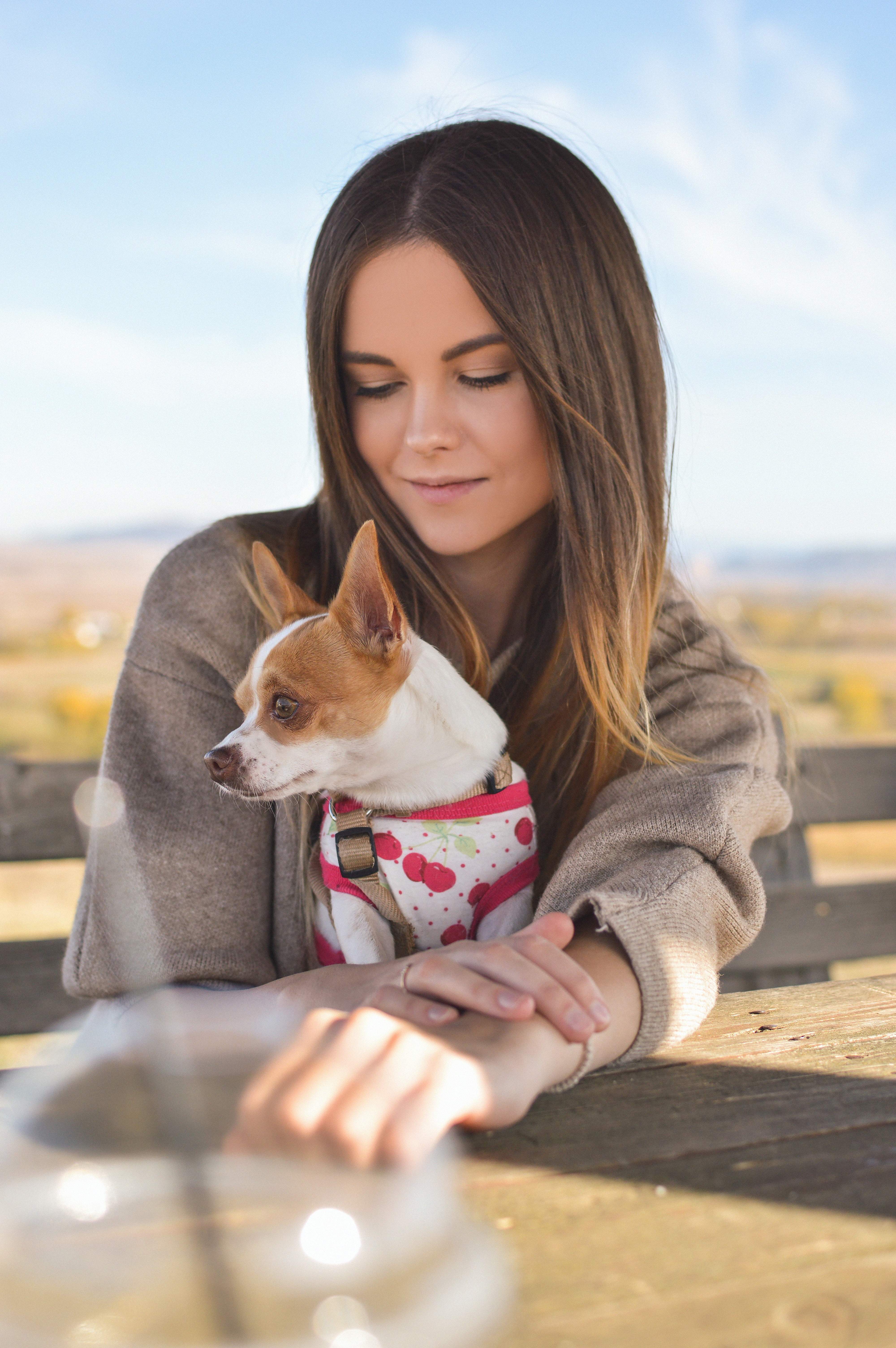 tilt-shift photography of woman behind short-coated white and brown puppy