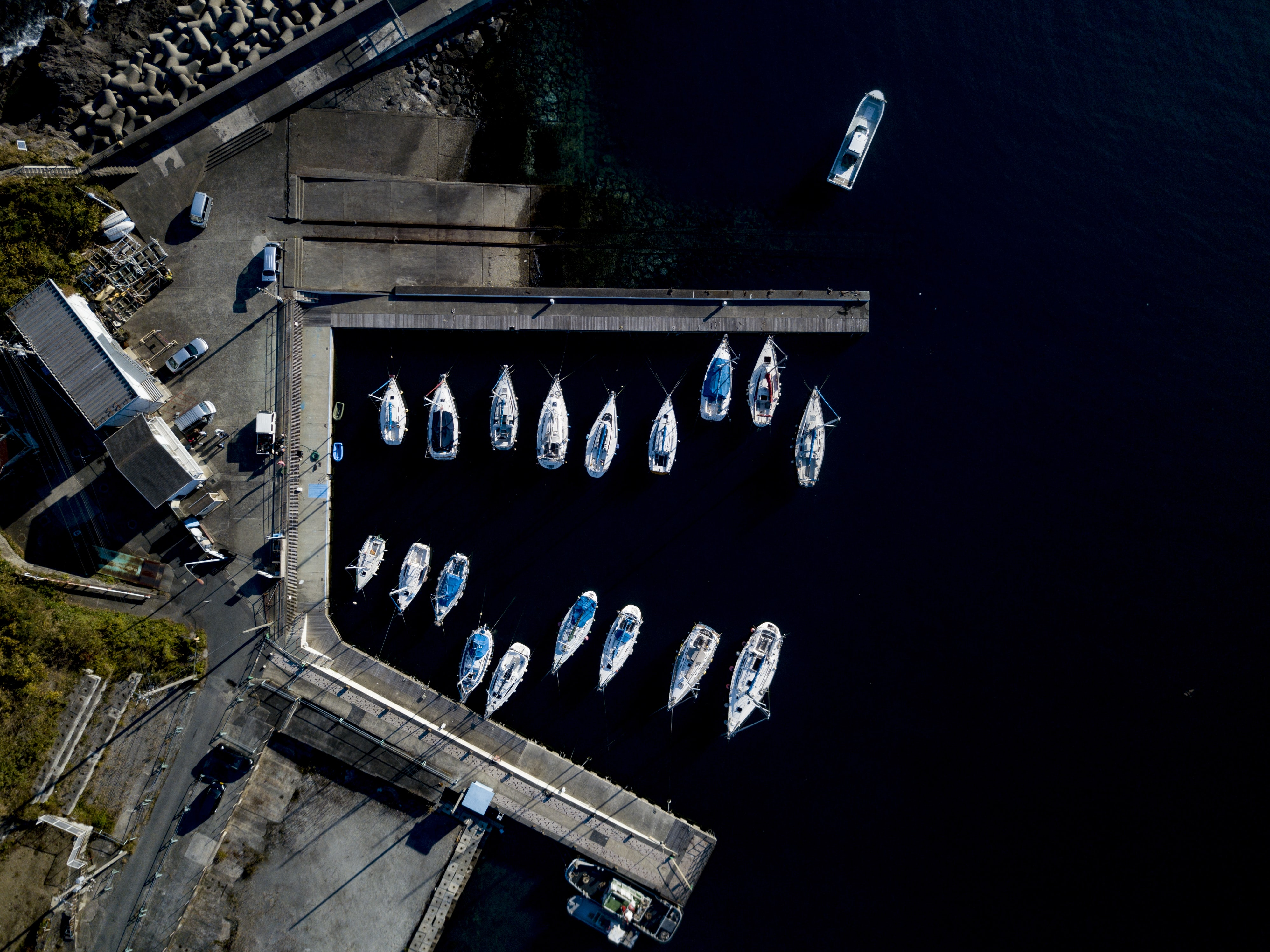 aerial photography of white boats on dock