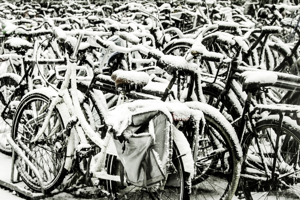 assorted bicycles in shallow focus photography