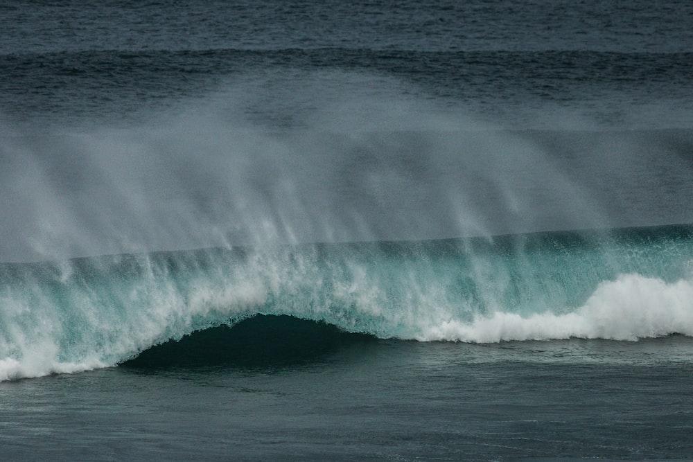 focus photography of ocean wave