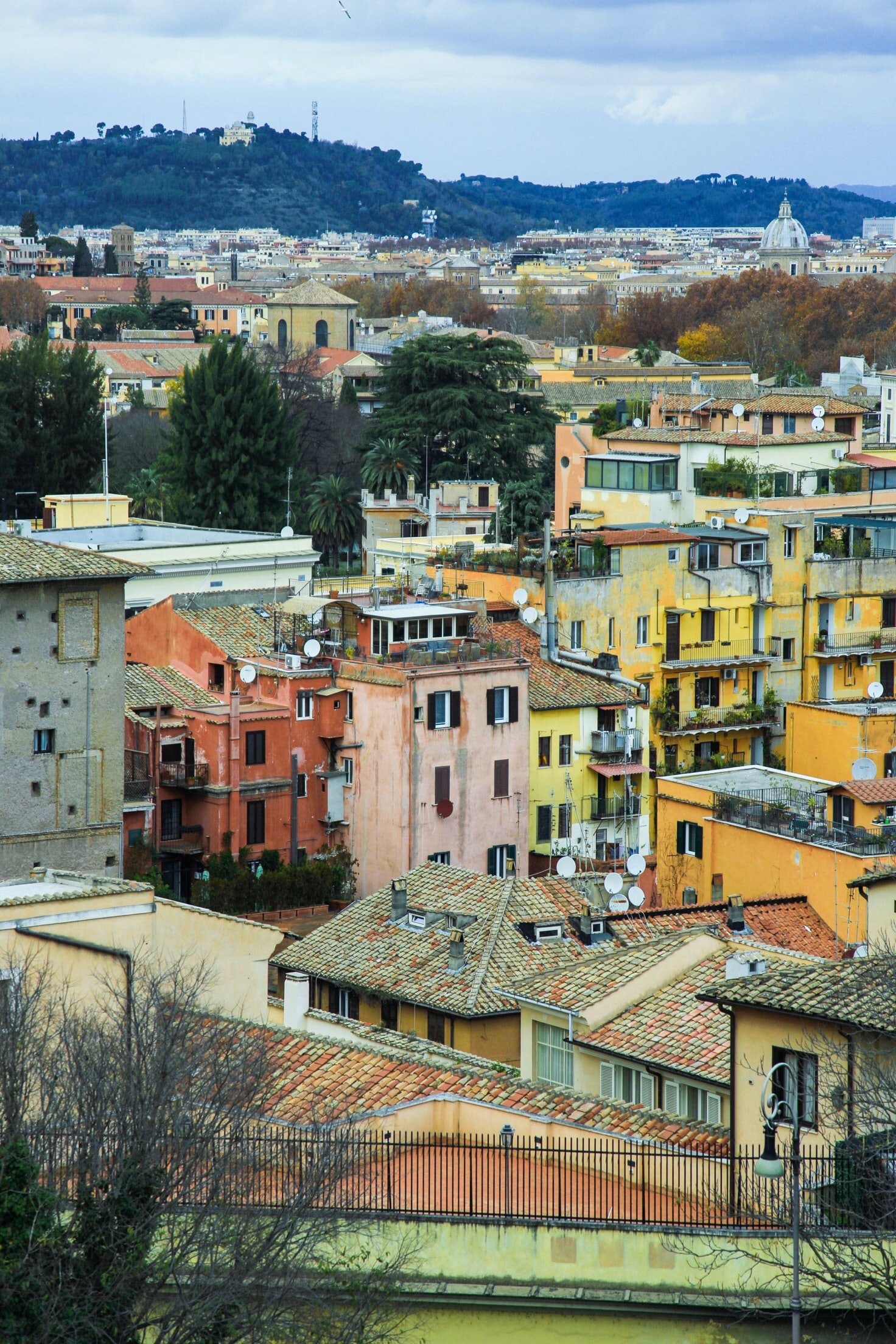 high angle photo of assorted-color houses