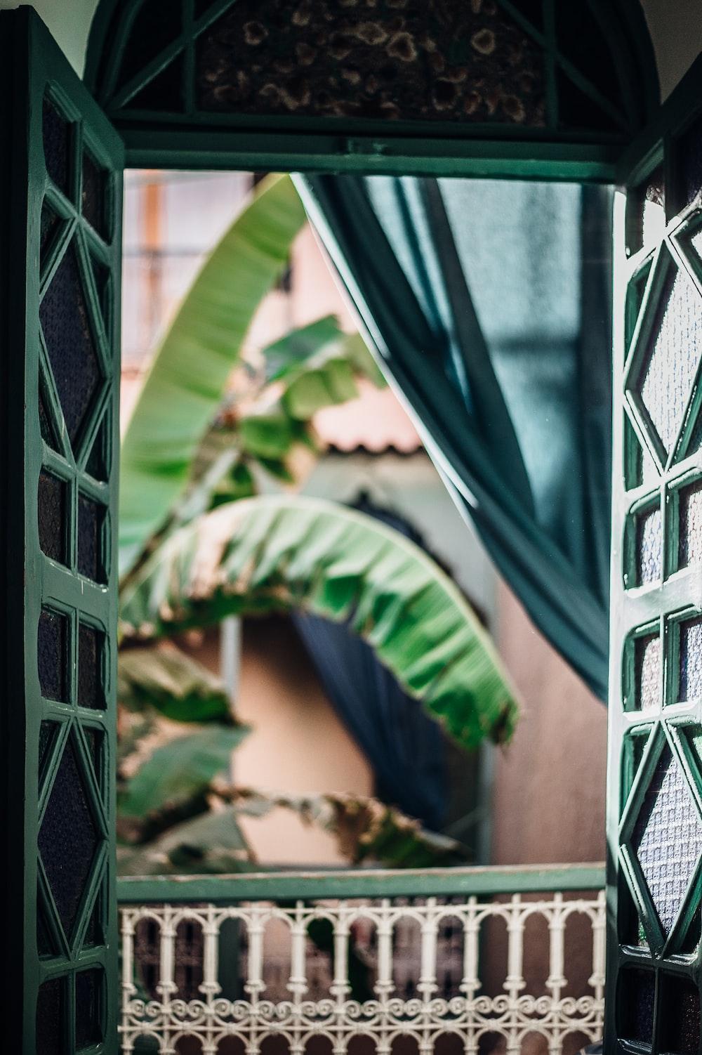closeup photography of green wooden door open near banana tree