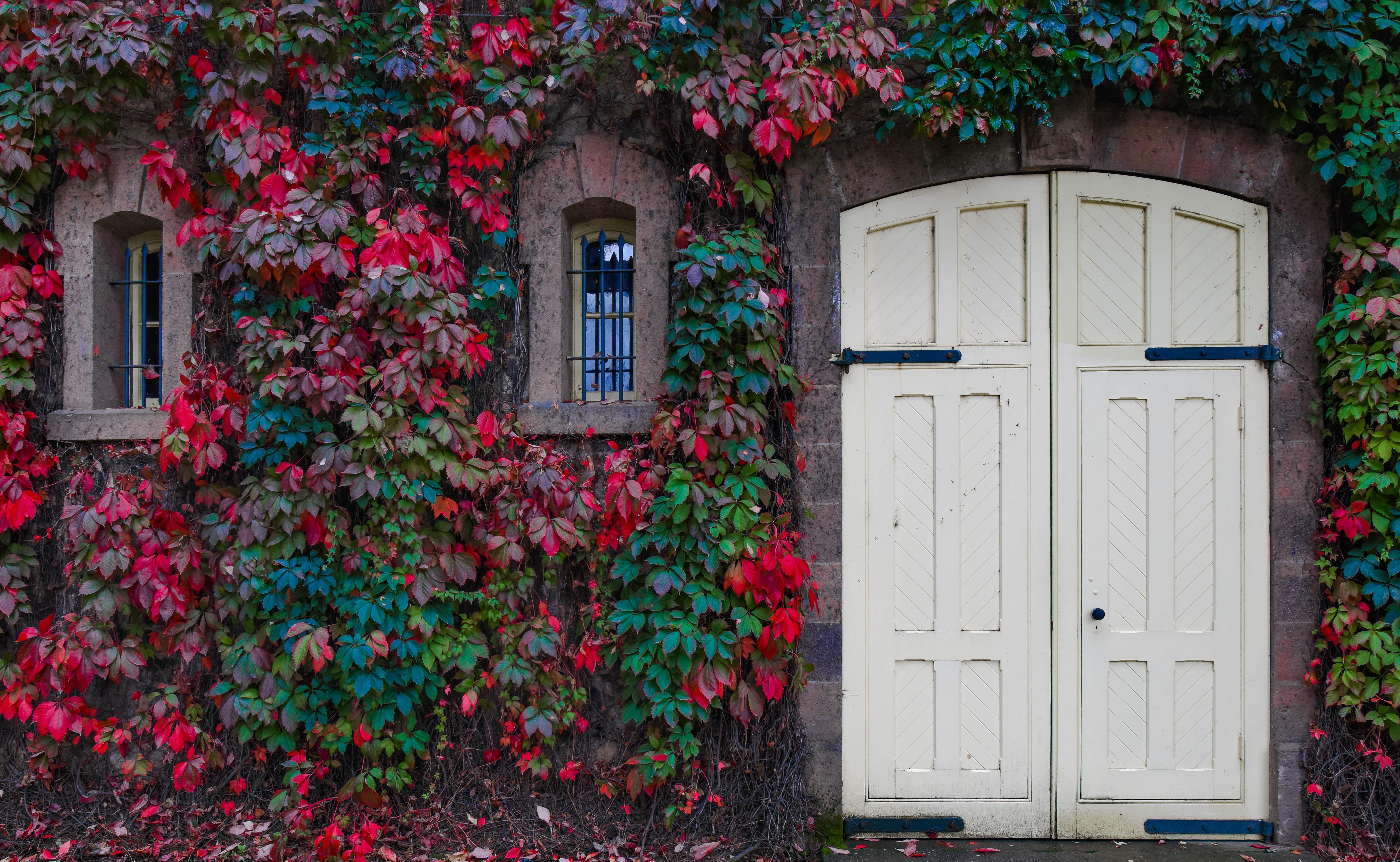 rule of thirds photo of white door
