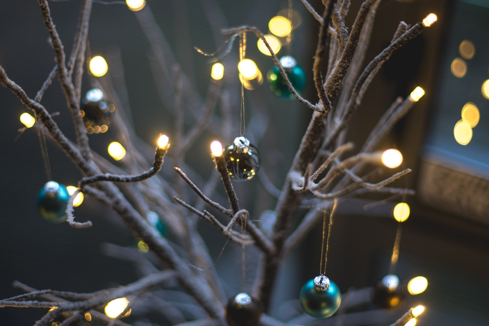 turned on string lights hanging on bare tree with baubles