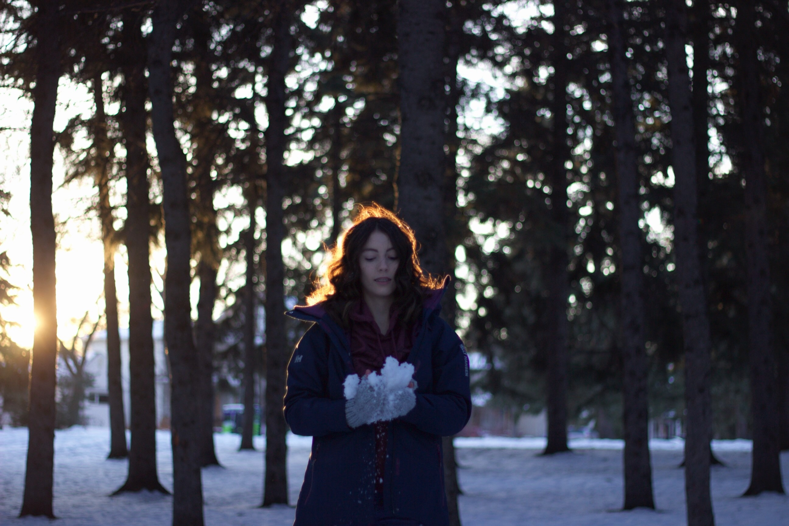 woman holding snow near trees during sunset