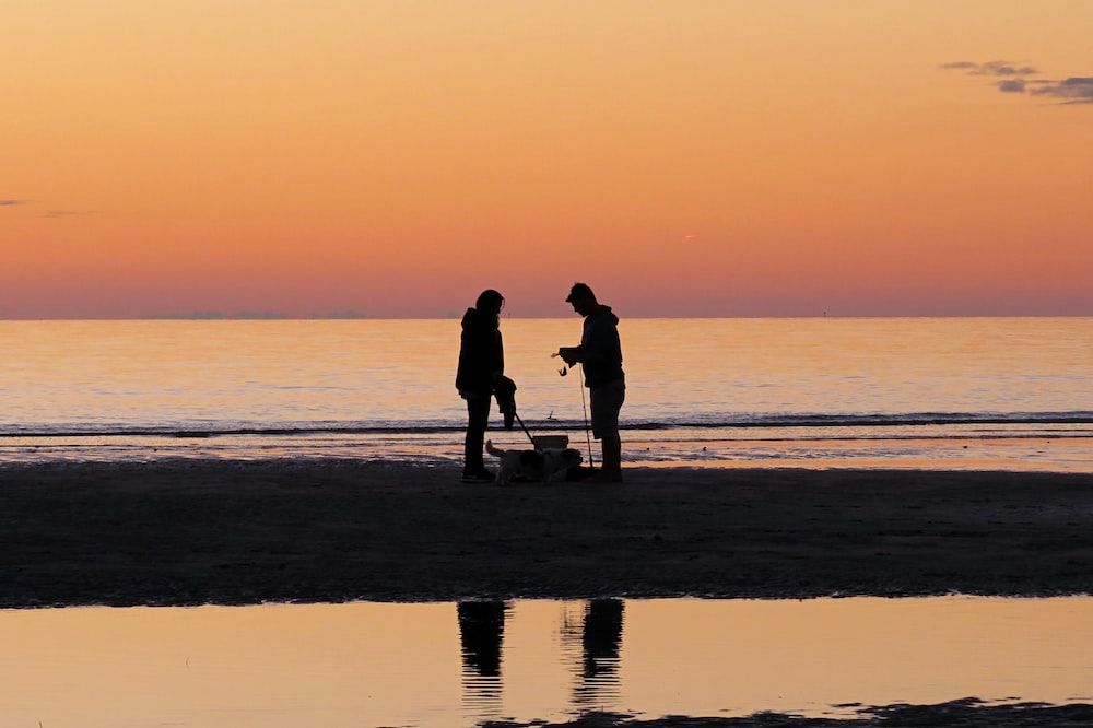 silhouette of two persons on shore