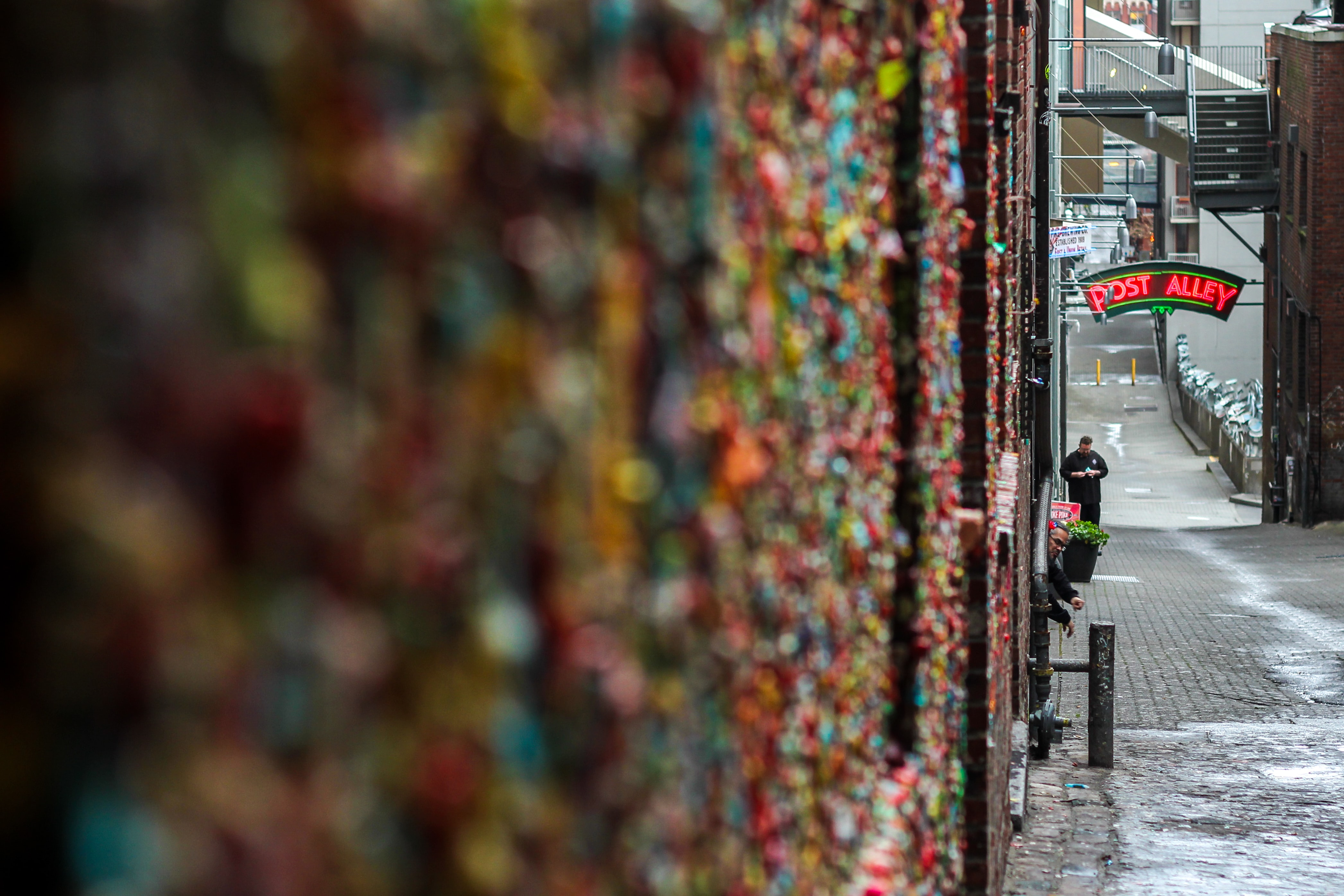close view of colored padlocks on the wall