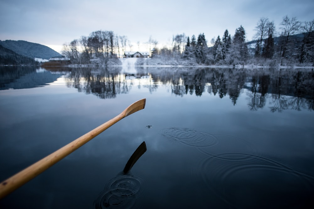 boat paddle on body of water