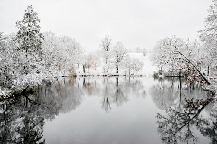 Pandora's Pond