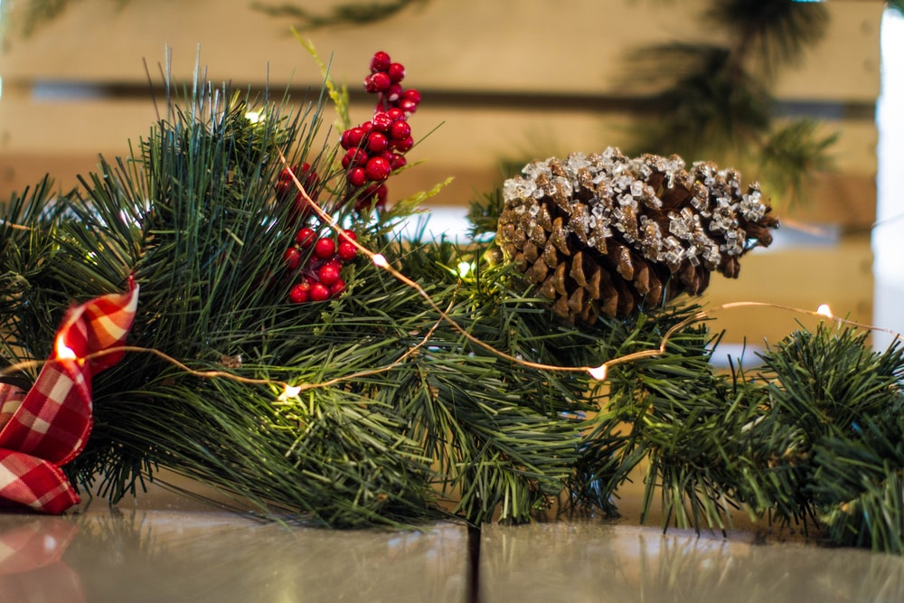 brown pine cone and yellow string lights