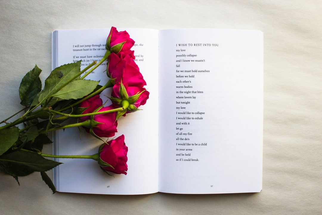 """A beautiful poem about letting go and allowing yourself to fall into your lover's arms by Janne Robinson. Excerpted from her poetry collection """"This Is For The Women Who Don't Give A F#CK"""" published by Thought Catalog Books 
