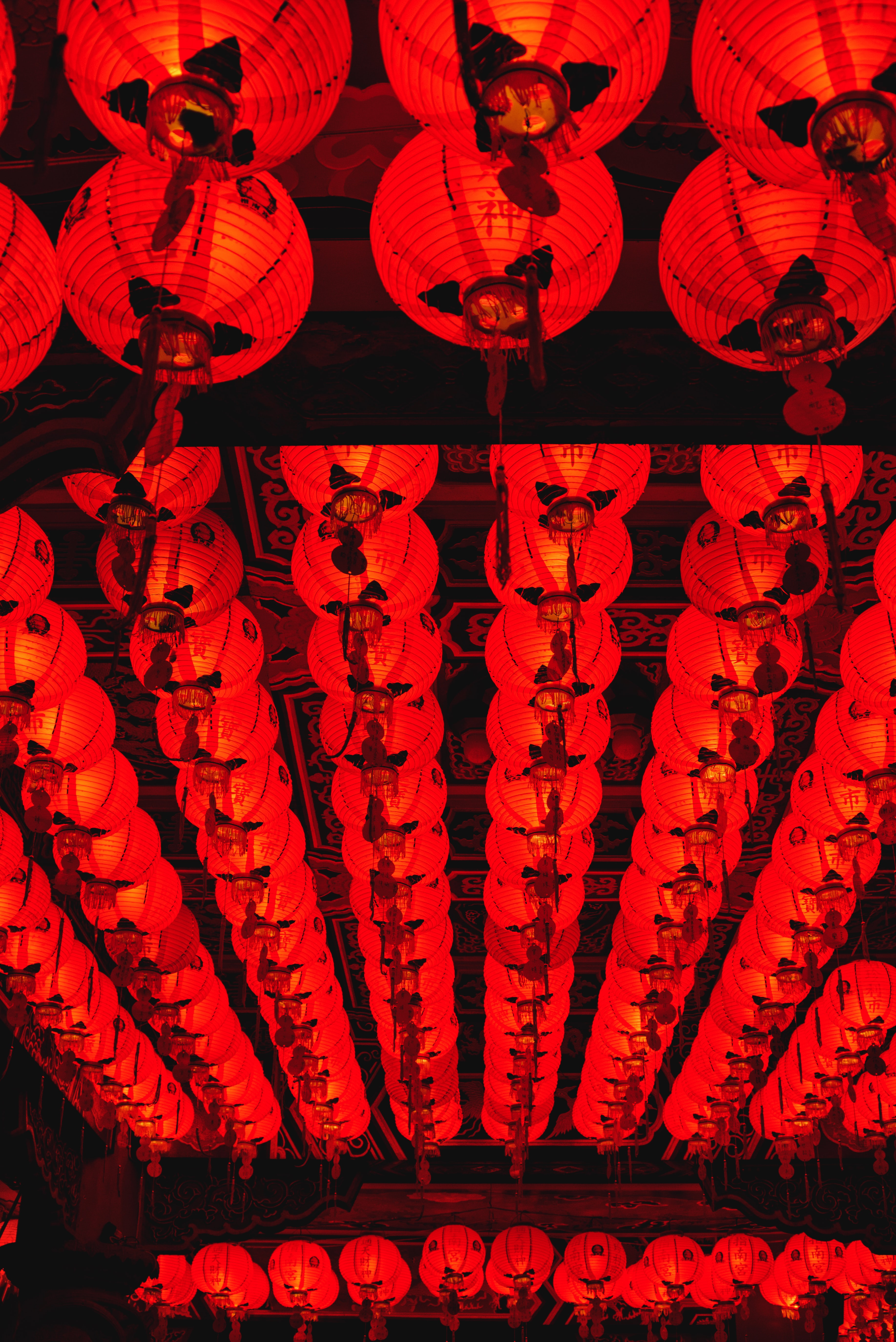 red Chinese lanterns in worm's eye photography