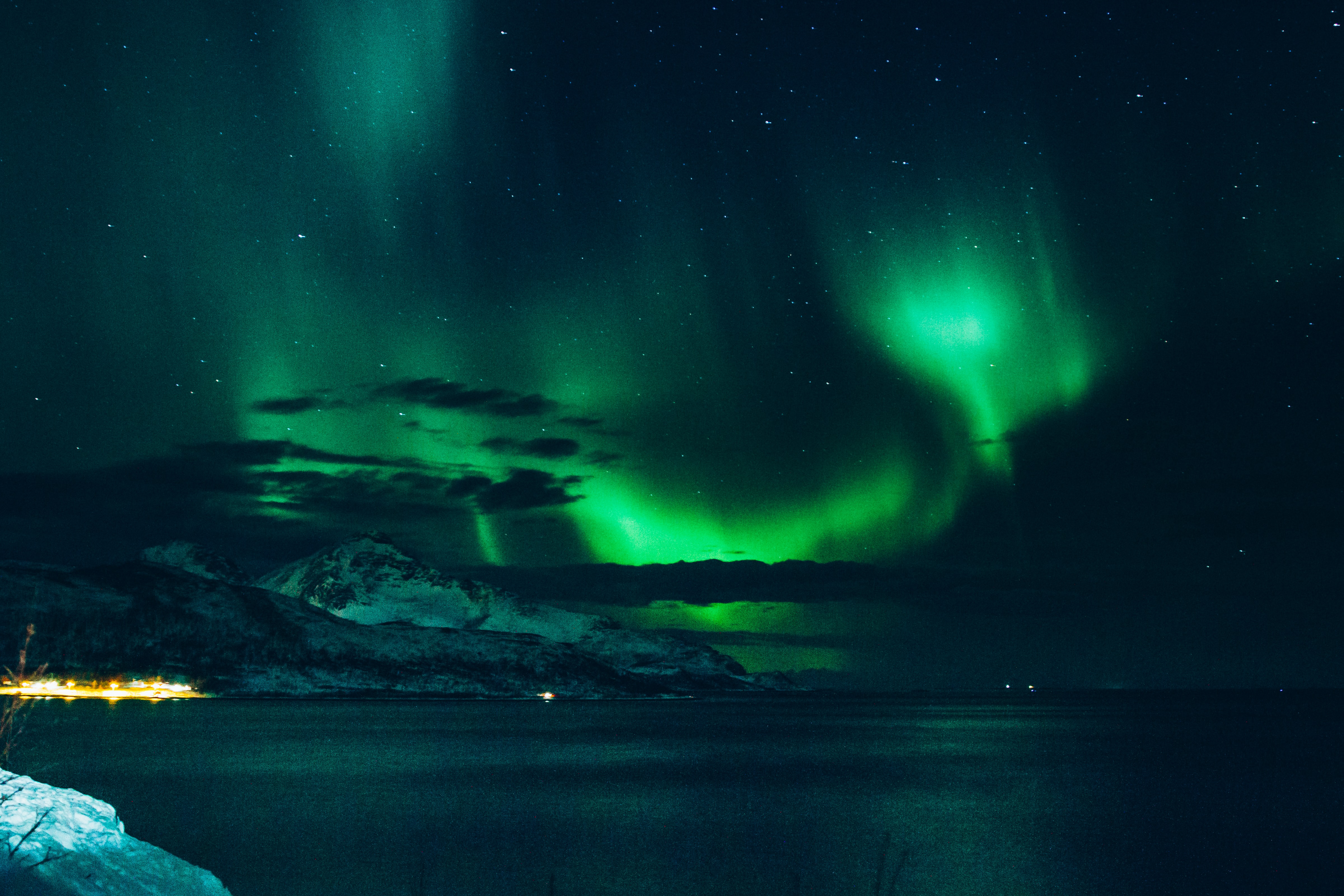 photo of aurora lights