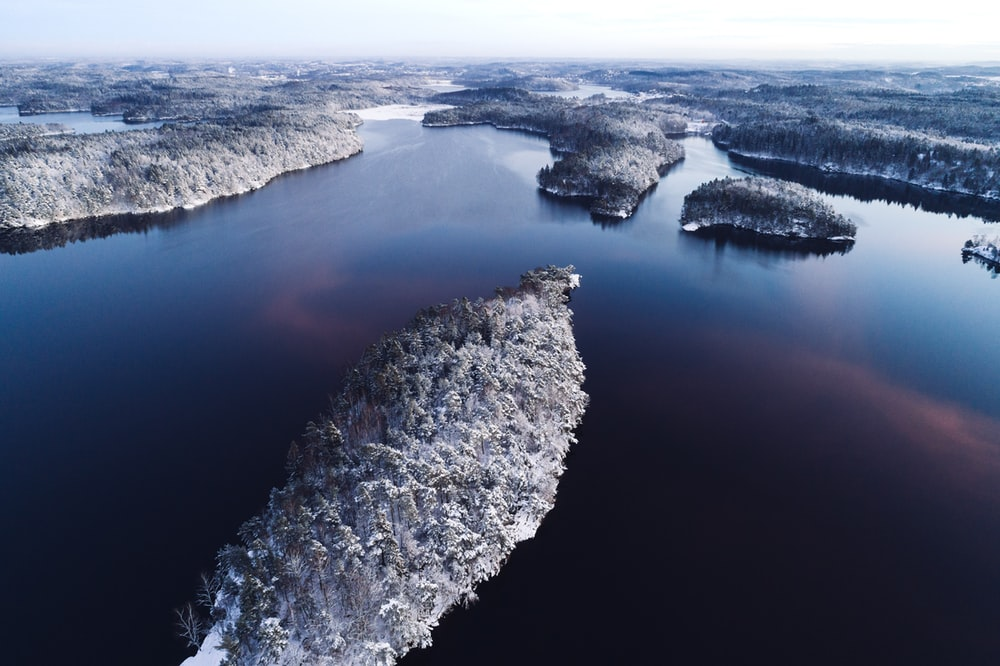 forest covered with snow viewing lake