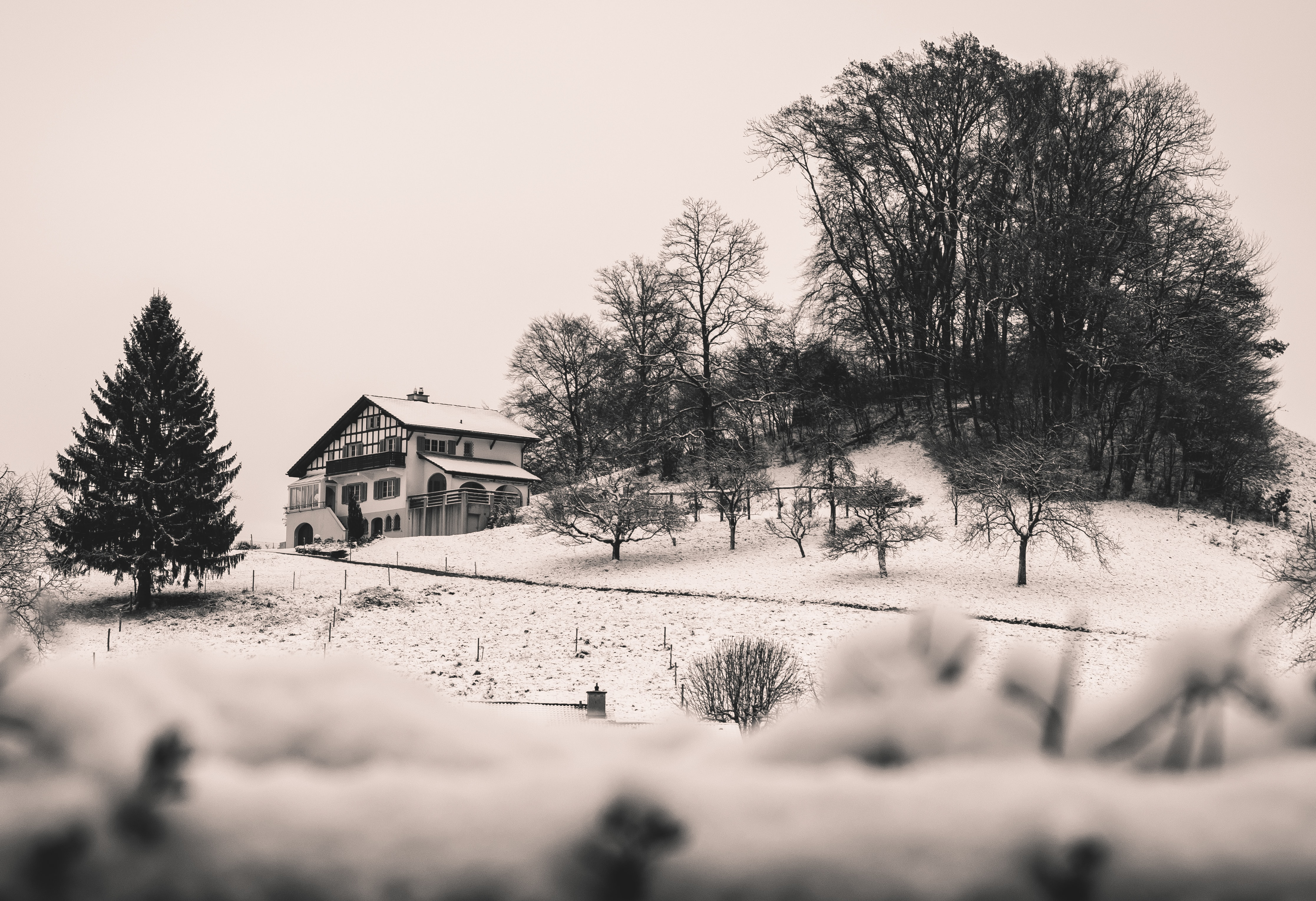 grayscale photo of cabin near tree on hill