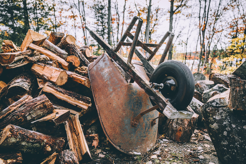 brown metal wheelbarrow leaning on firewood near forest