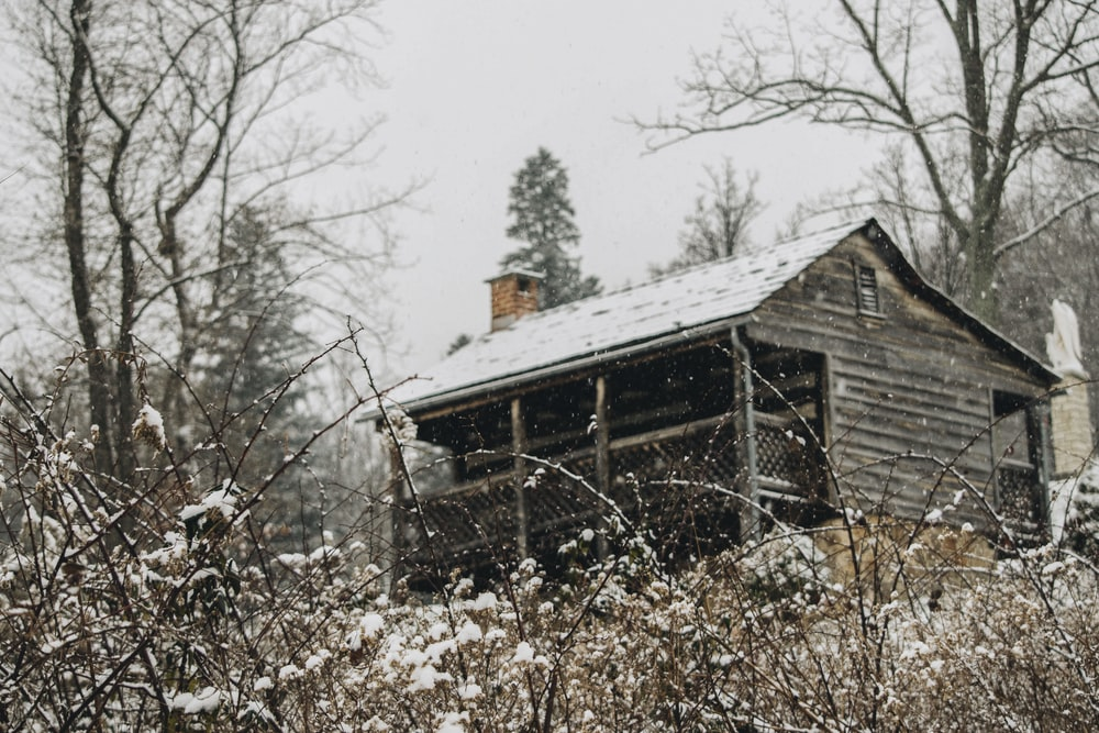 gray house near trees during daytime