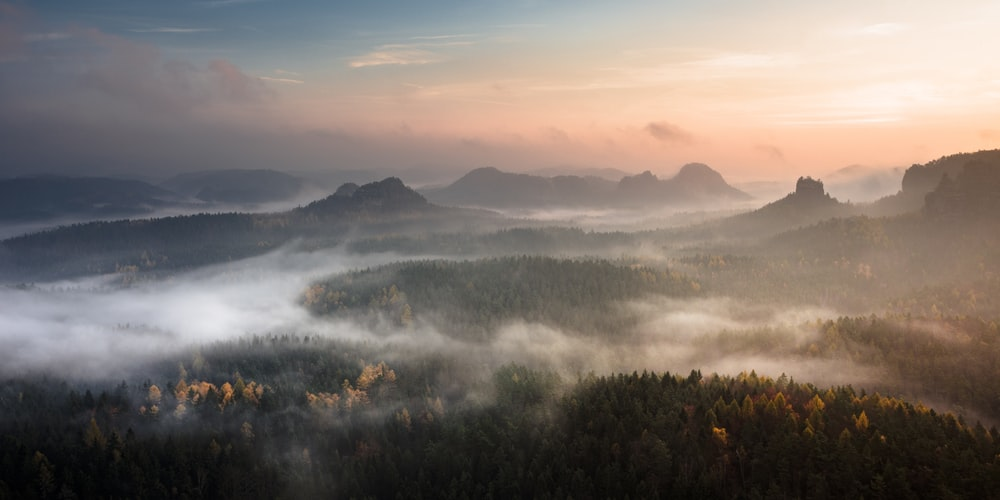 mountain surrounded with fog