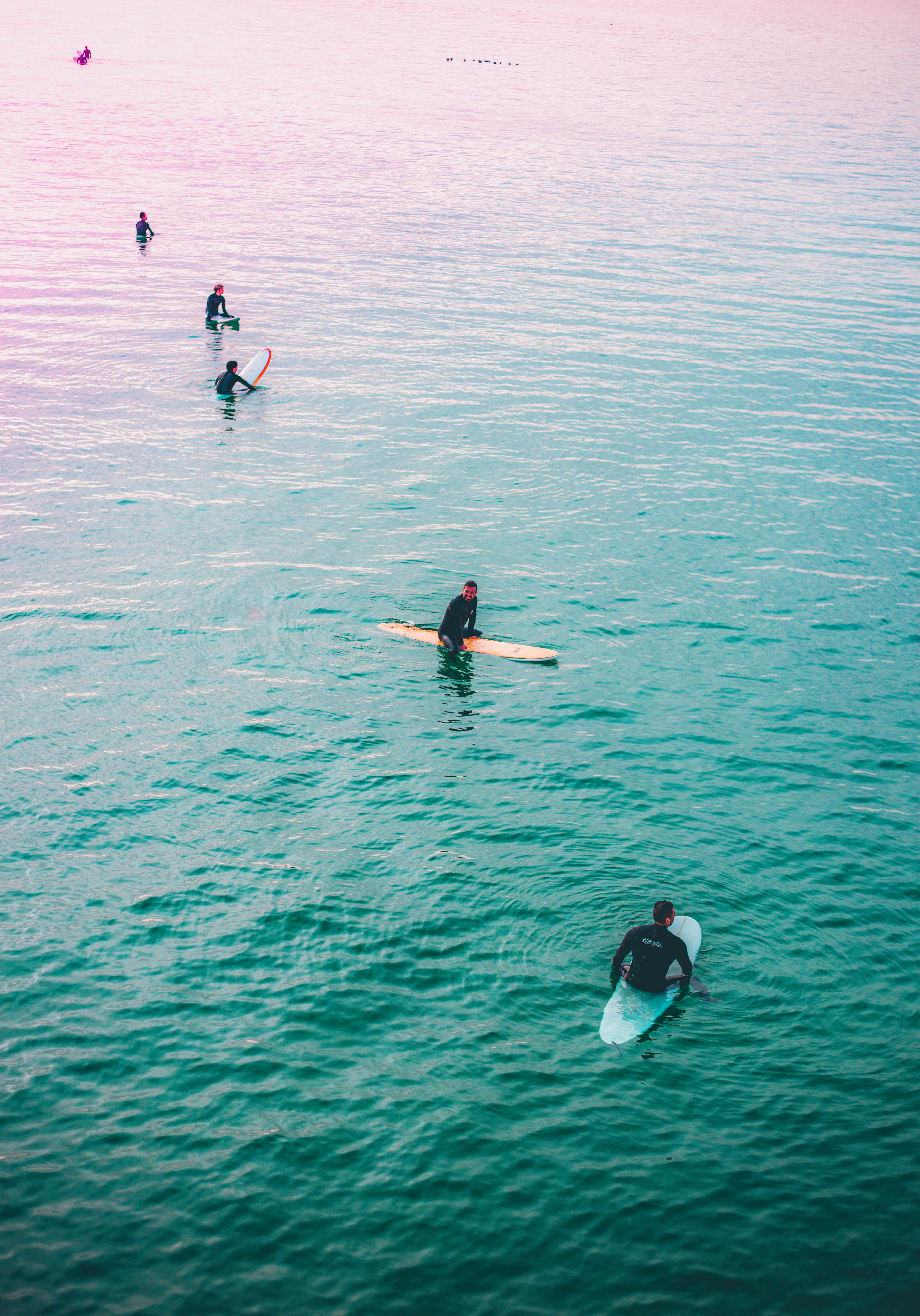 five people holding surfboards