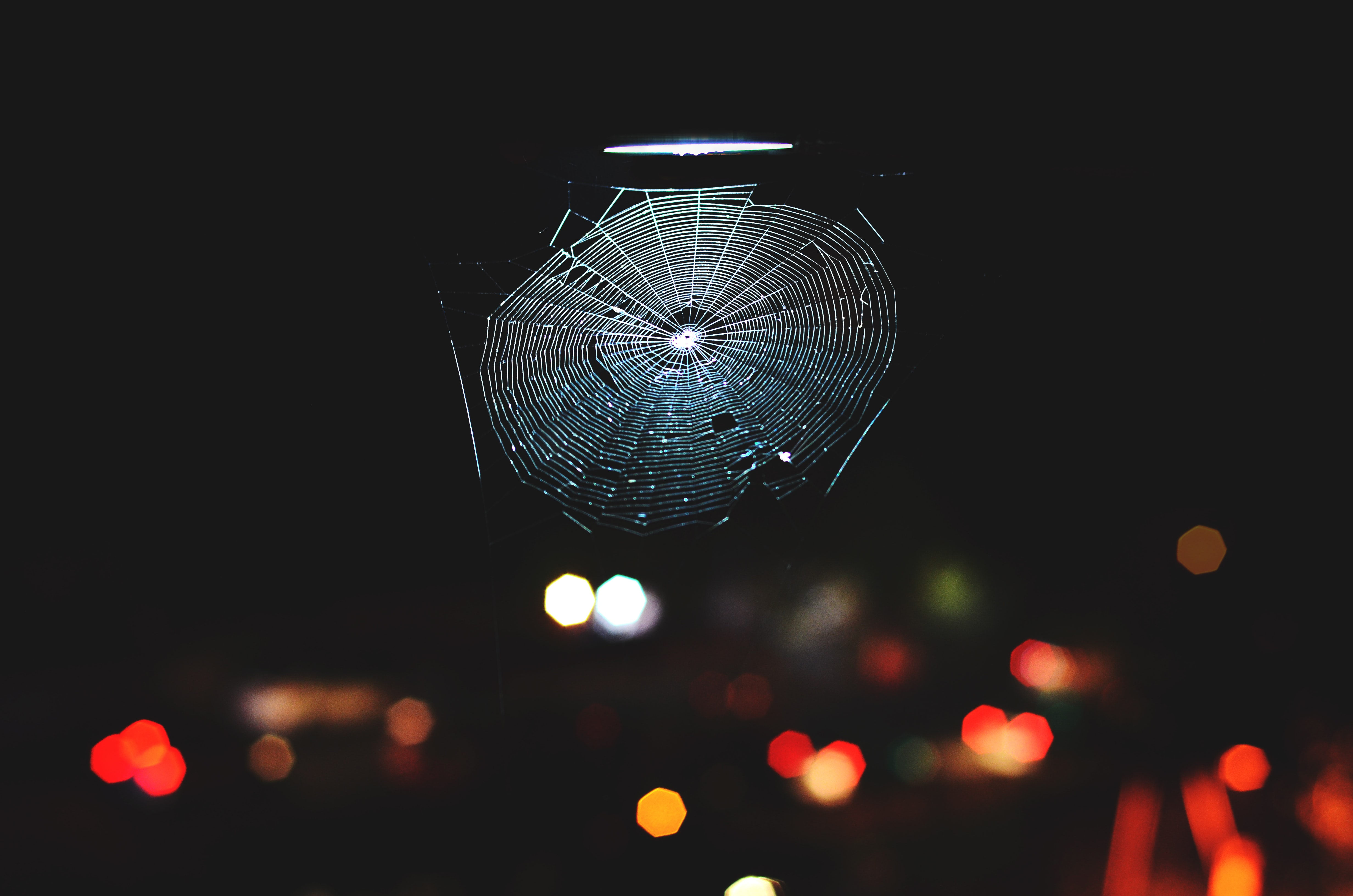 selective focus photography of cabweb at nighttime