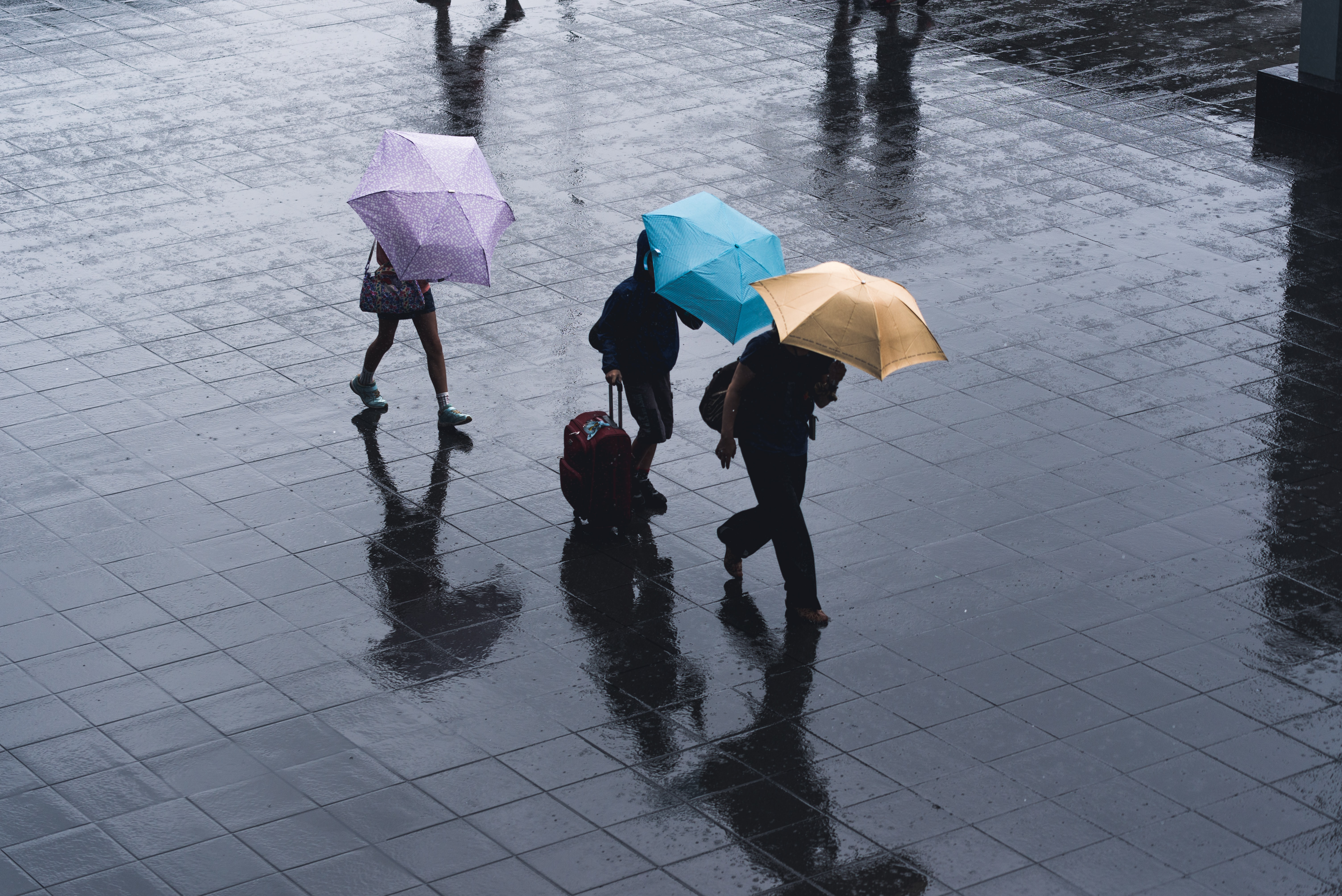 selective color photography of three person holding umbrellas under the rain